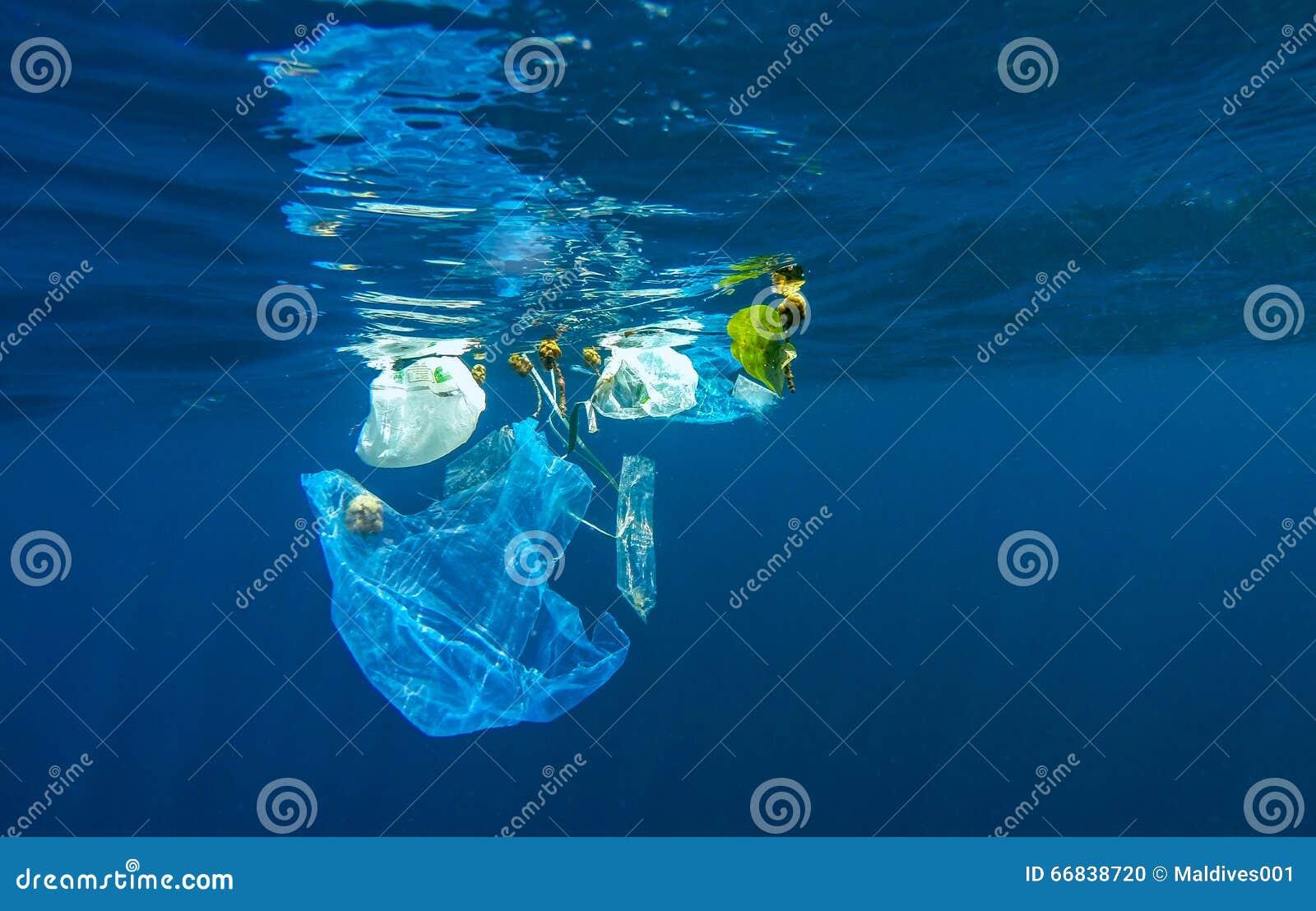 Plástico de Discared
