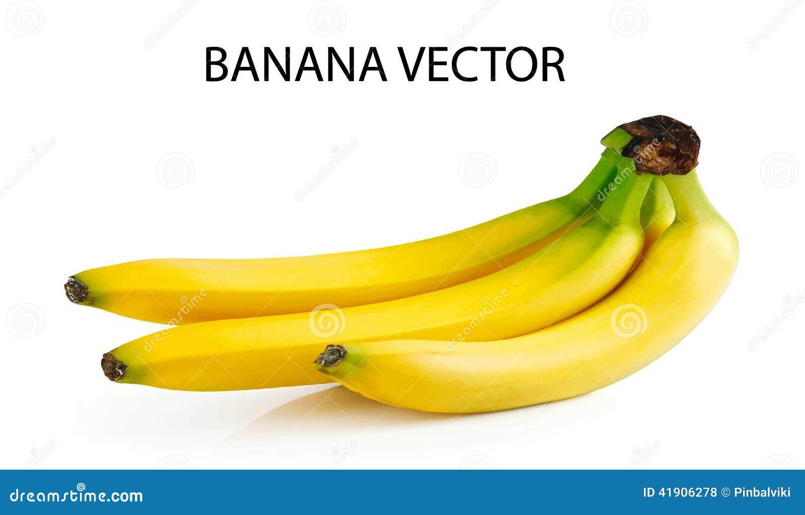 Plátano aislado