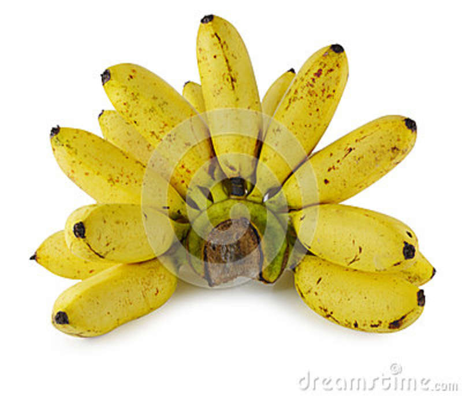 Plátanos aislados en el fondo blanco