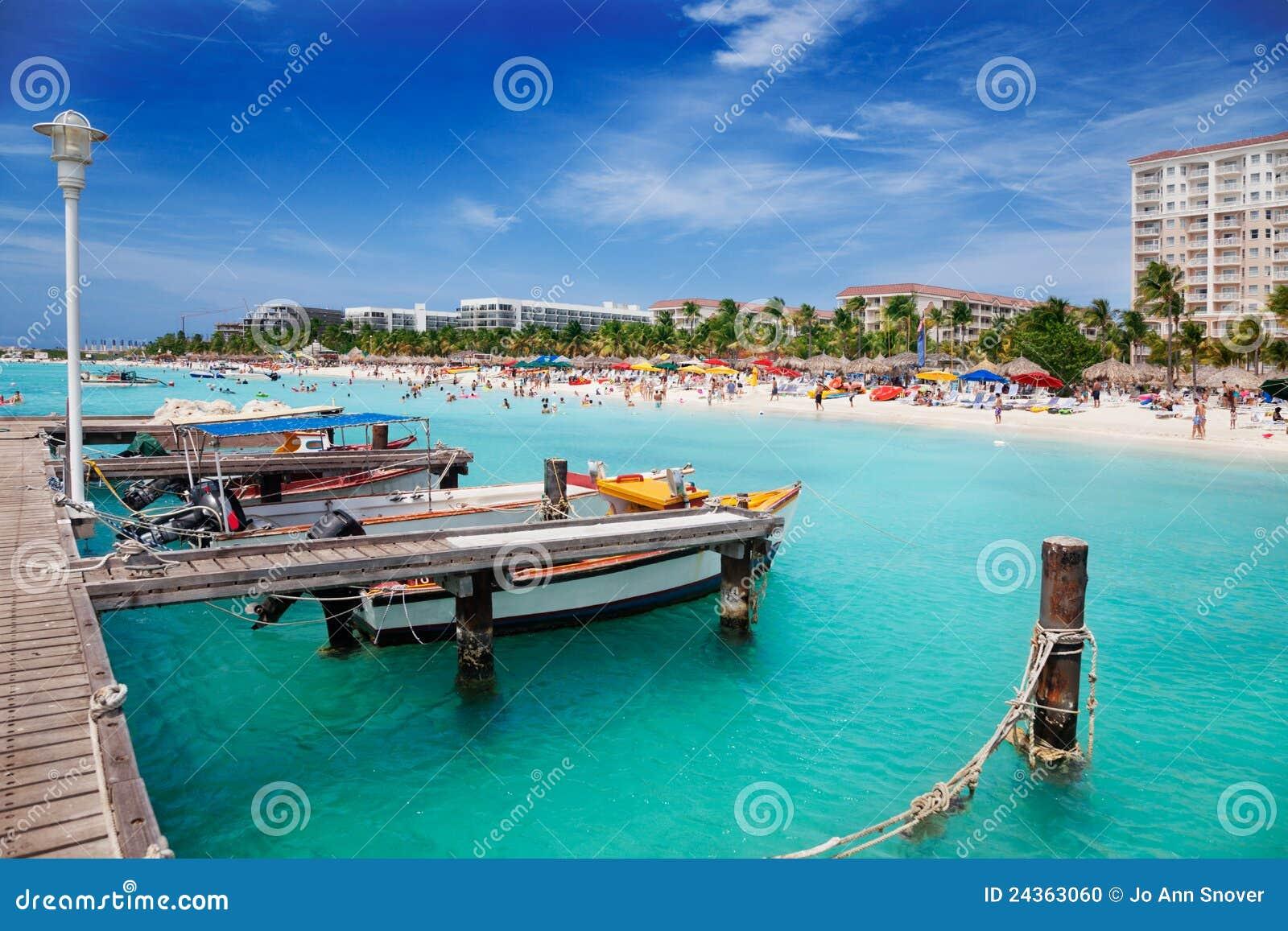 Plażowa Aruba palma