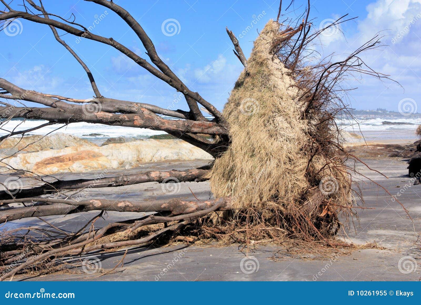 Plażowa erozja
