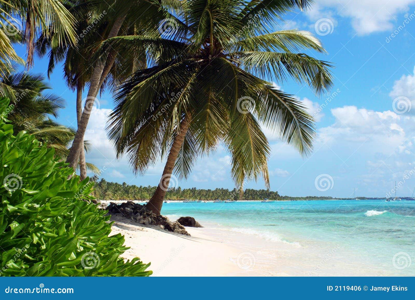 Plażowa tropikalna wyspa