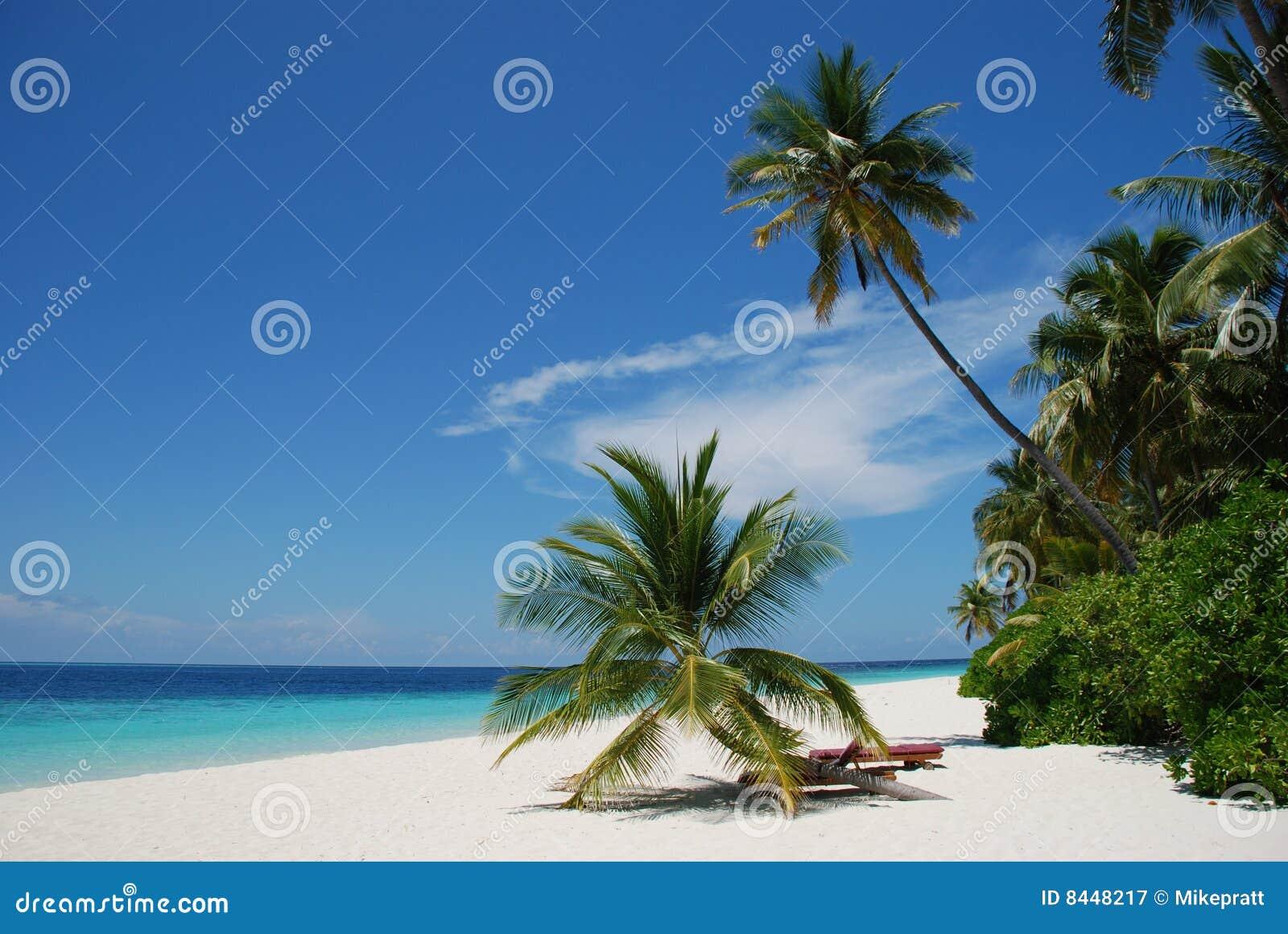 Plażowi Maldives