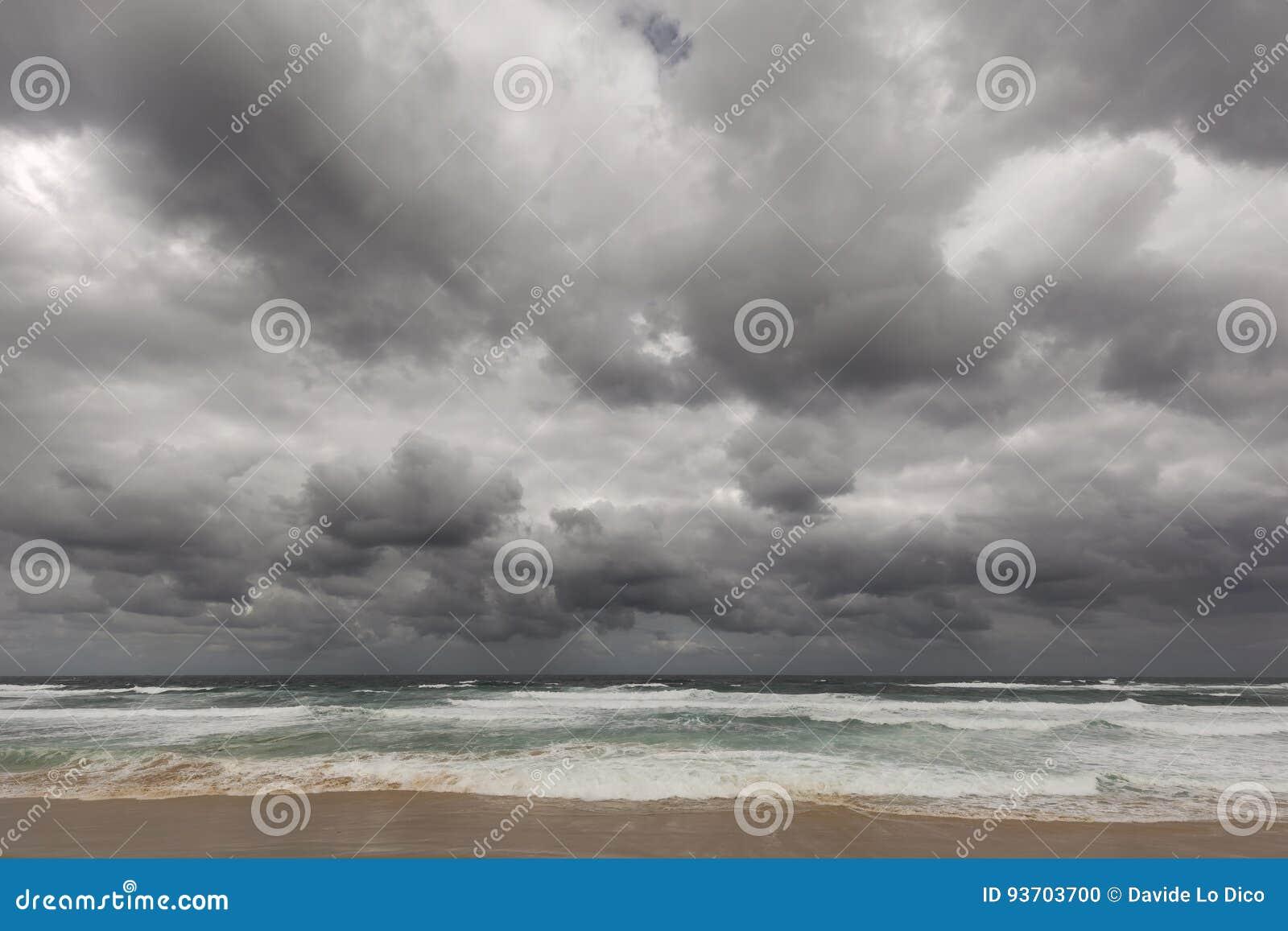 Plażowi nobbys