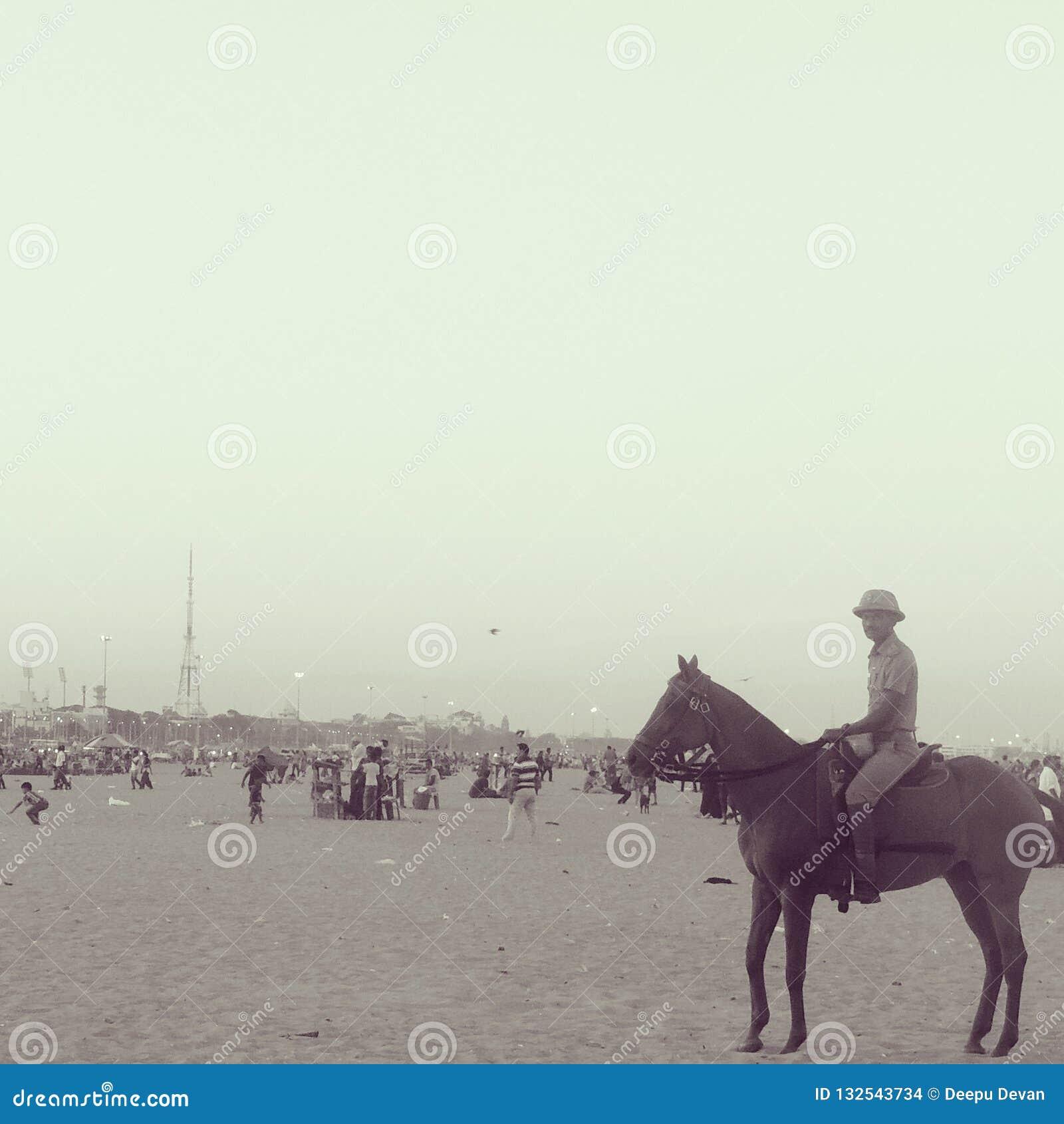 Plażowi policjanci na horseback