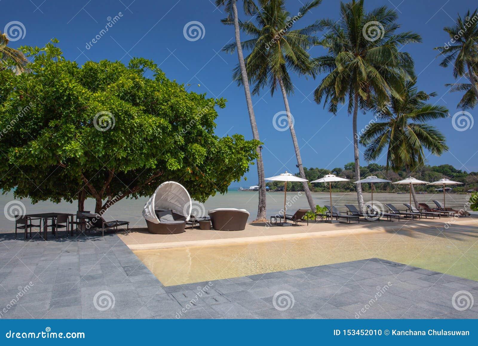 Plażowi wakacje, luksusowy basen z drzewkami palmowymi