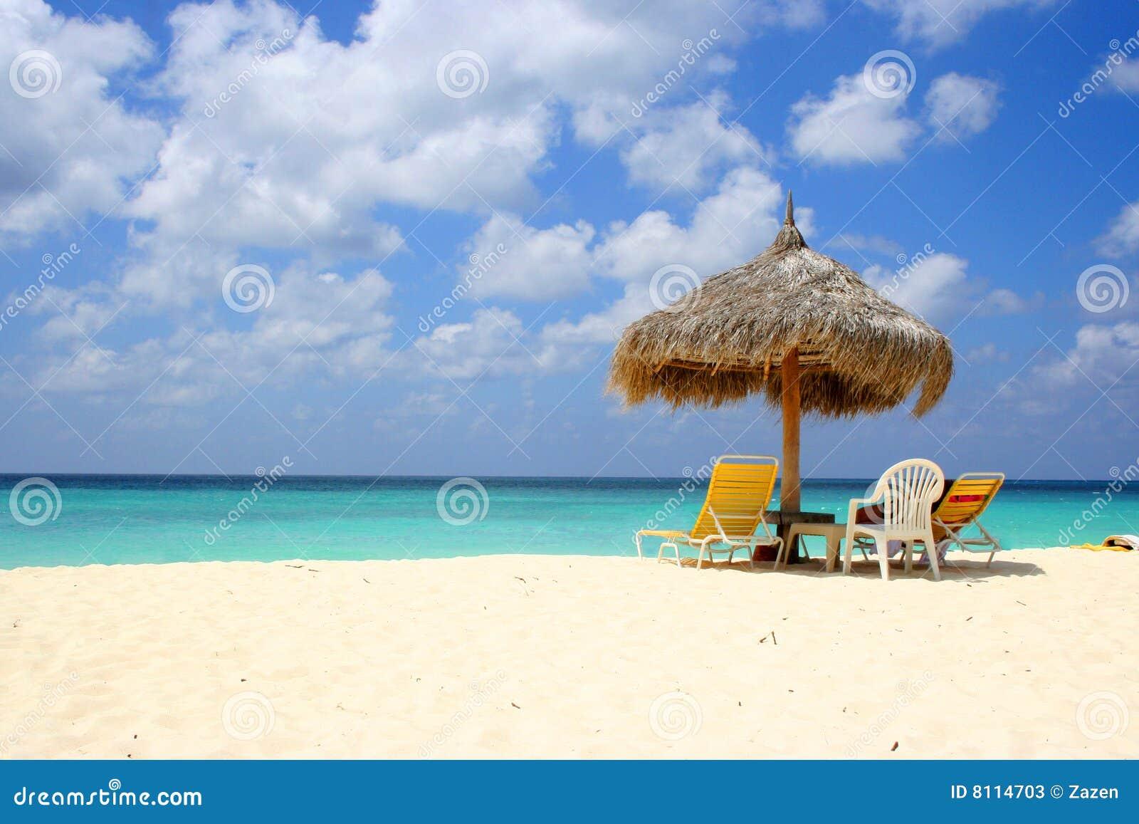 Plażowy Aruba orzeł