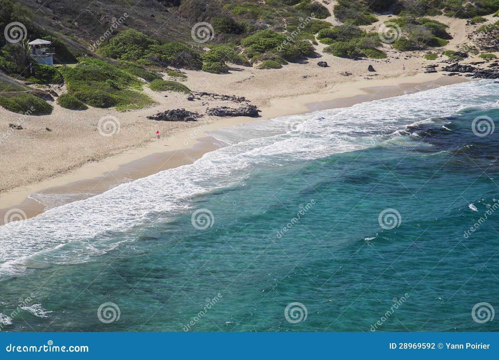 Plażowy brzeg