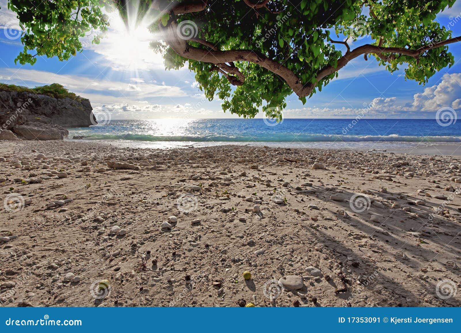 Plażowy Curacao