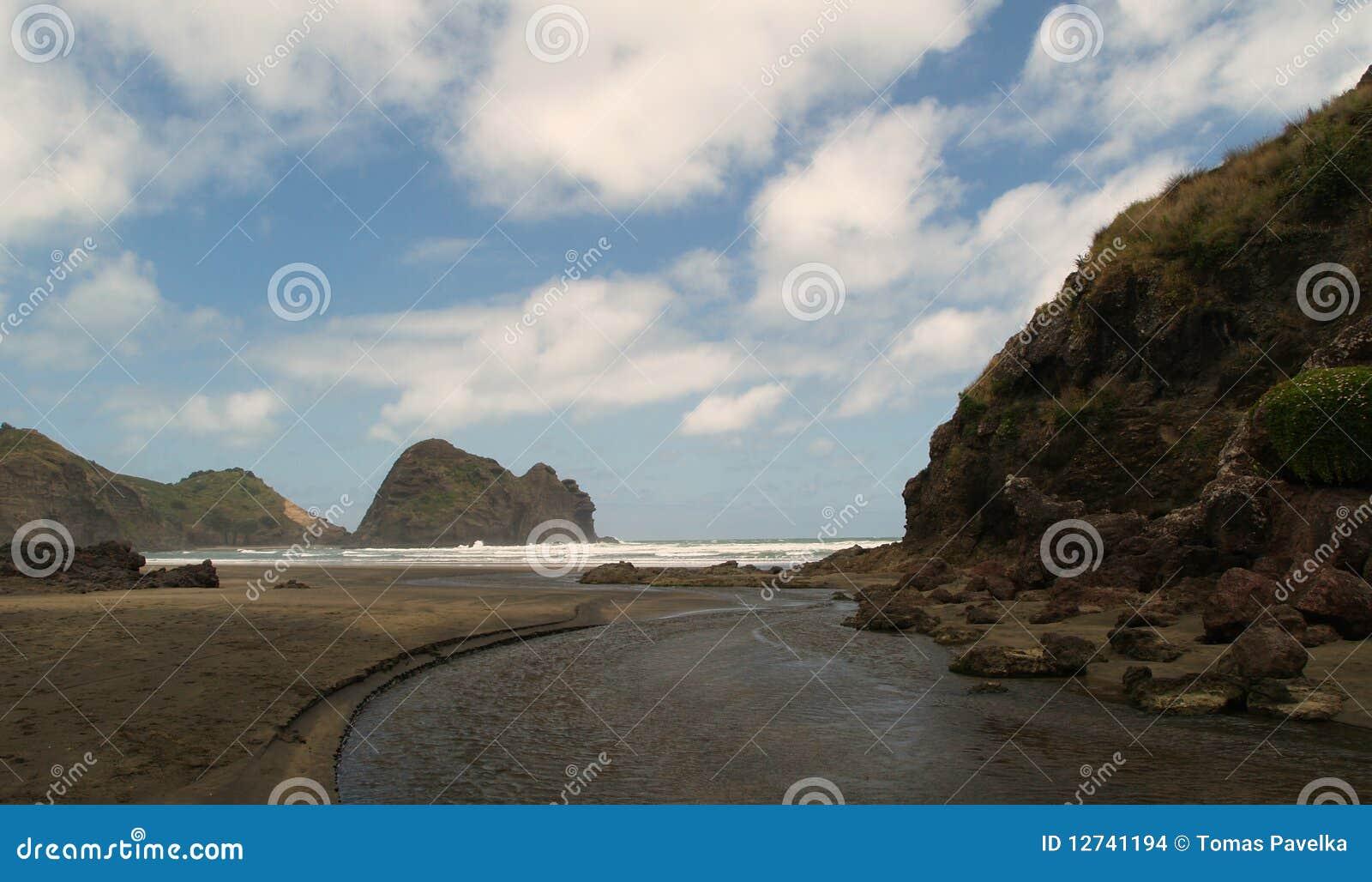 Plażowy piha