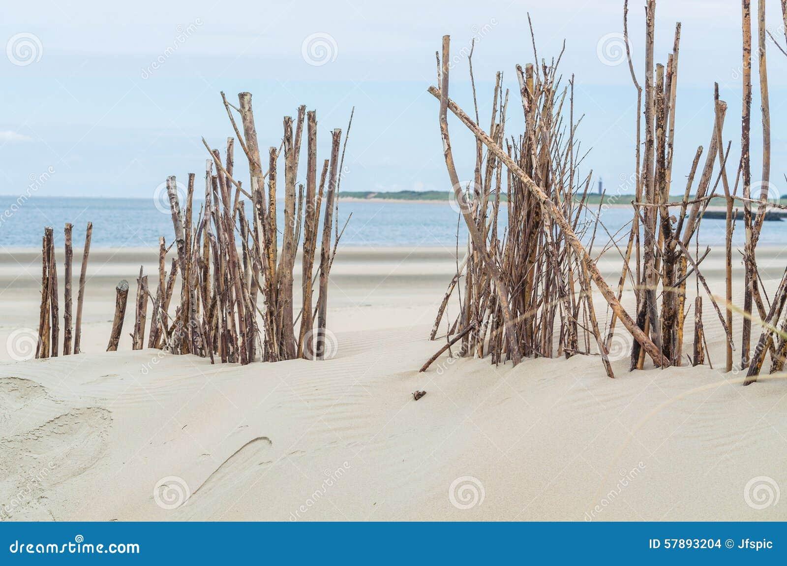 Plaży i piaska diuny
