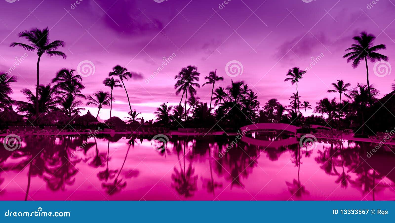 Plaża nad panoramy menchii czerwonego morza zmierzchem