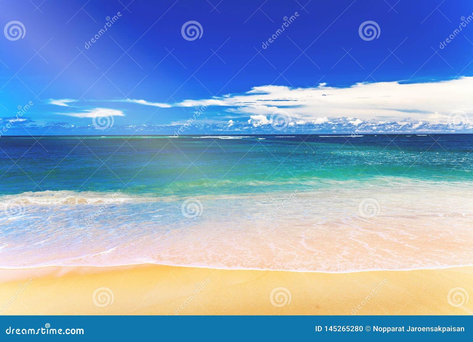 Pla?owego b??kitny piaska nieba tropikalny biel