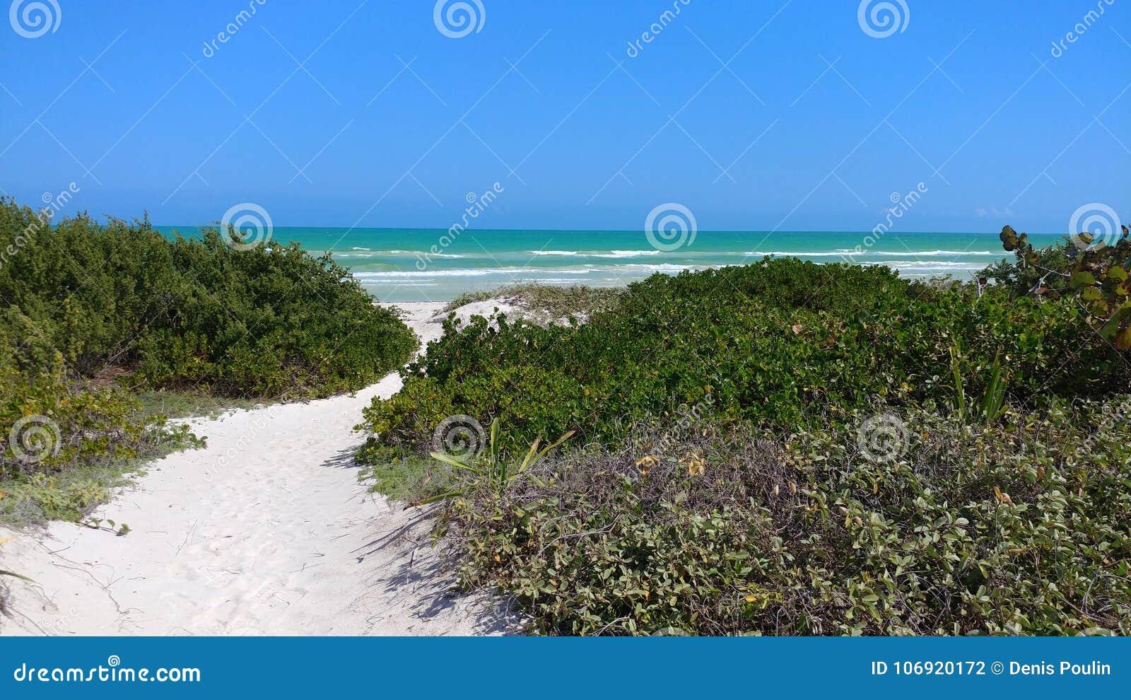 Plaża w El Cuyo, Meksyk