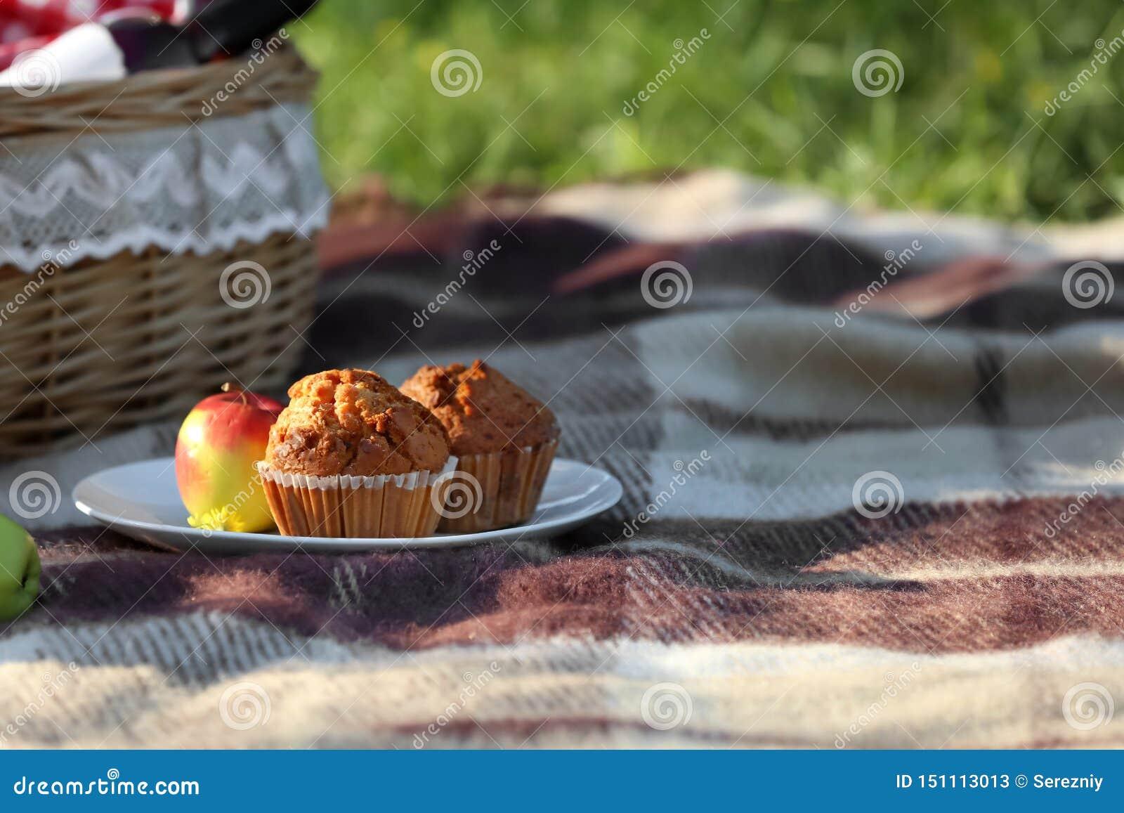 Placa com os queques saborosos preparados para o piquenique no parque