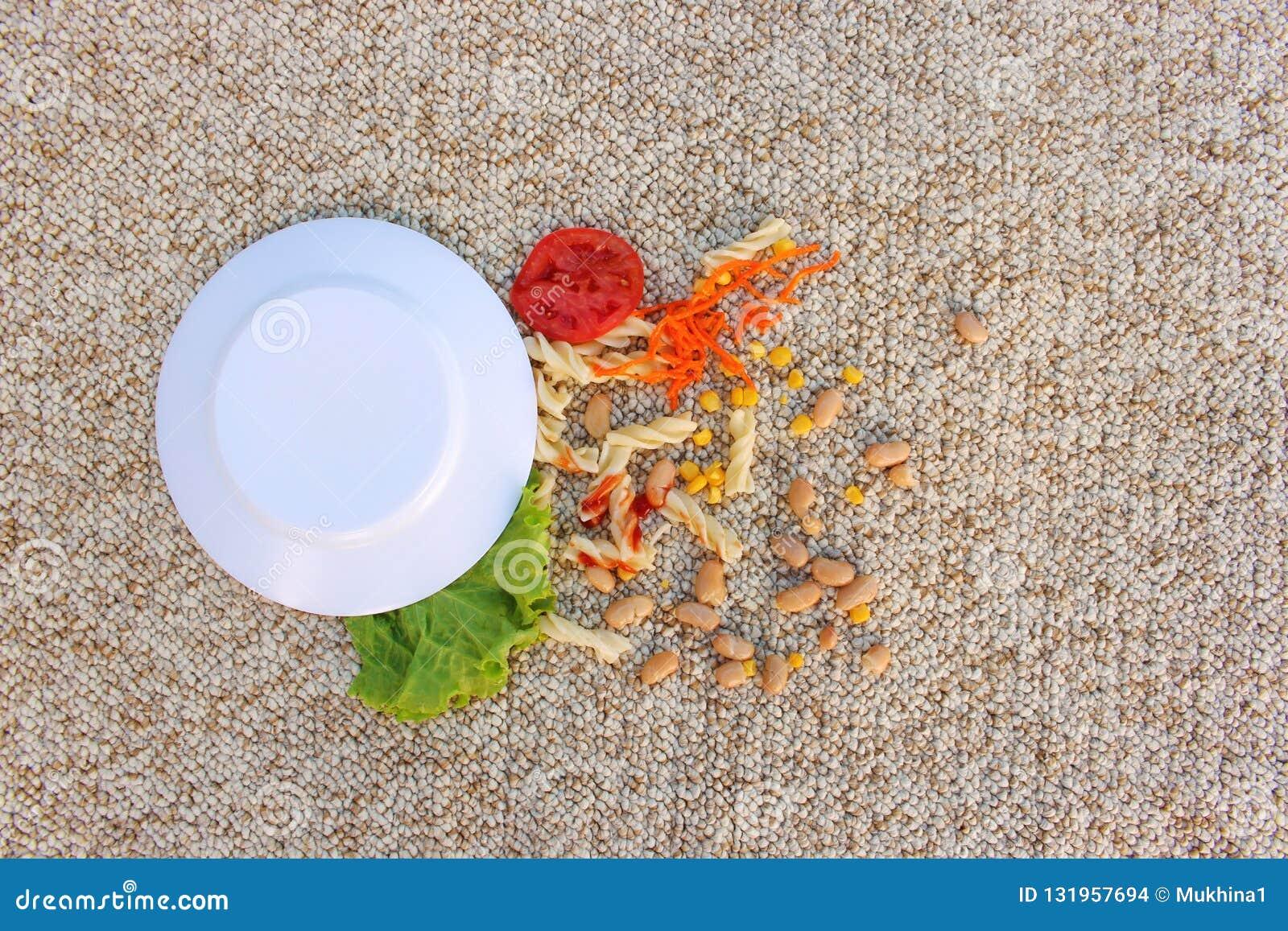 A placa do alimento caiu no tapete