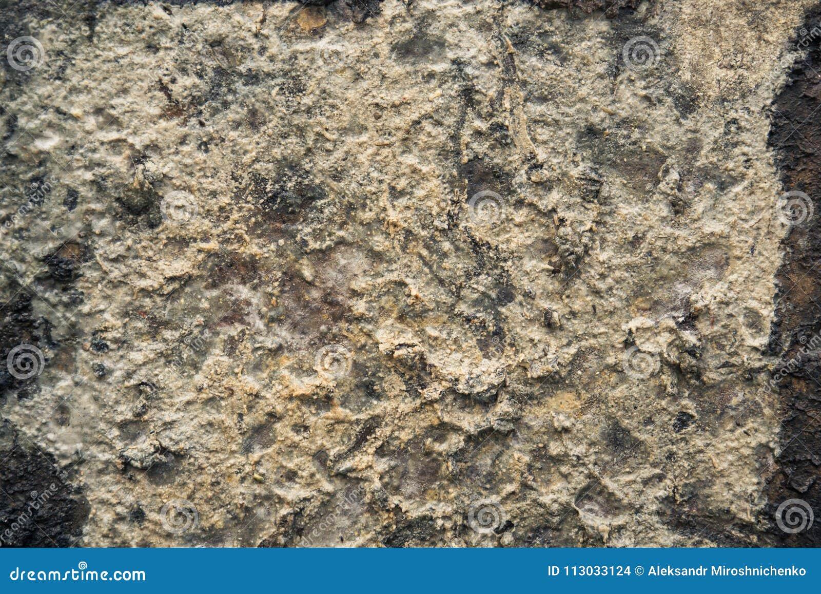 Placa extraña en el bloque de cemento