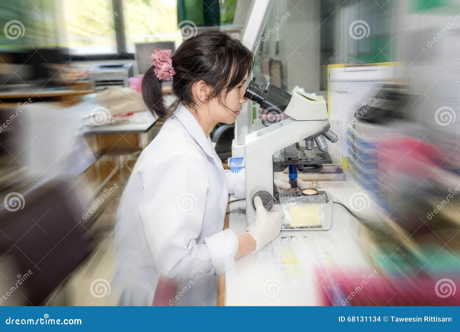 Placa médica da raia do tecnólogo para a cultura das bactérias ou a identificação