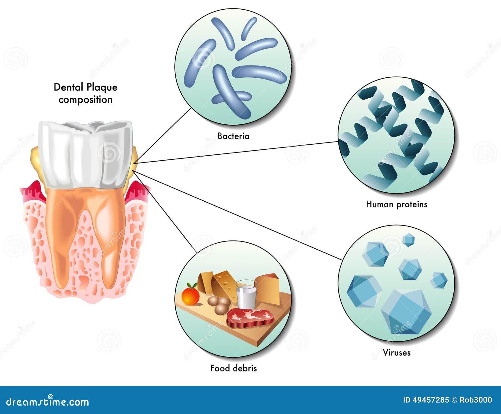 Natural Treatment Protocol For Pnemonia
