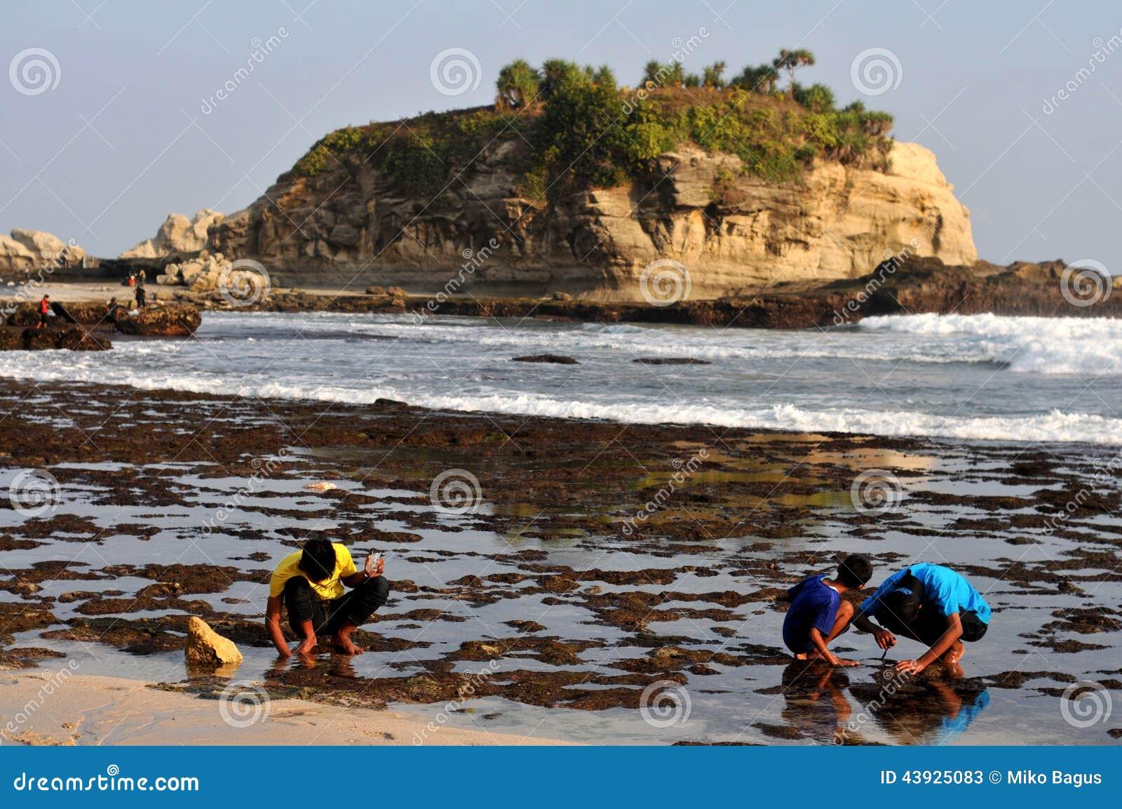 Placcaggio della sabbia in spiaggia di Klayar, Pacitan