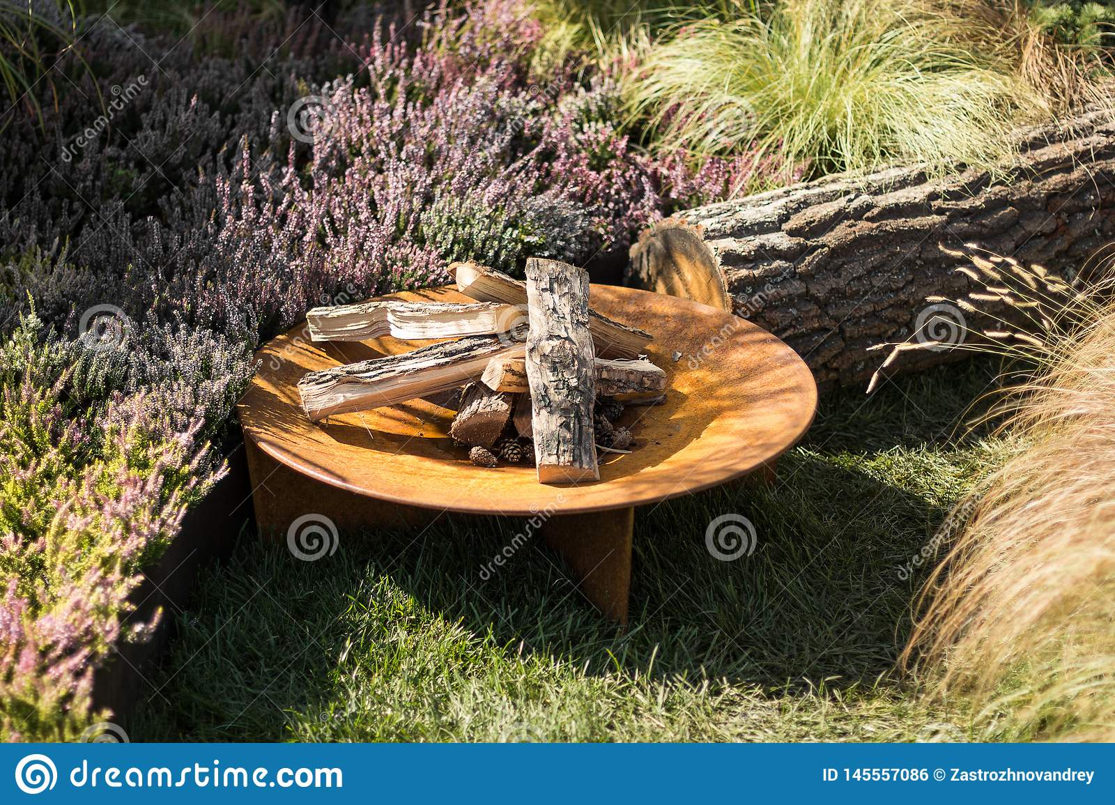 A place for a fire in the garden, dry firewood and flowers