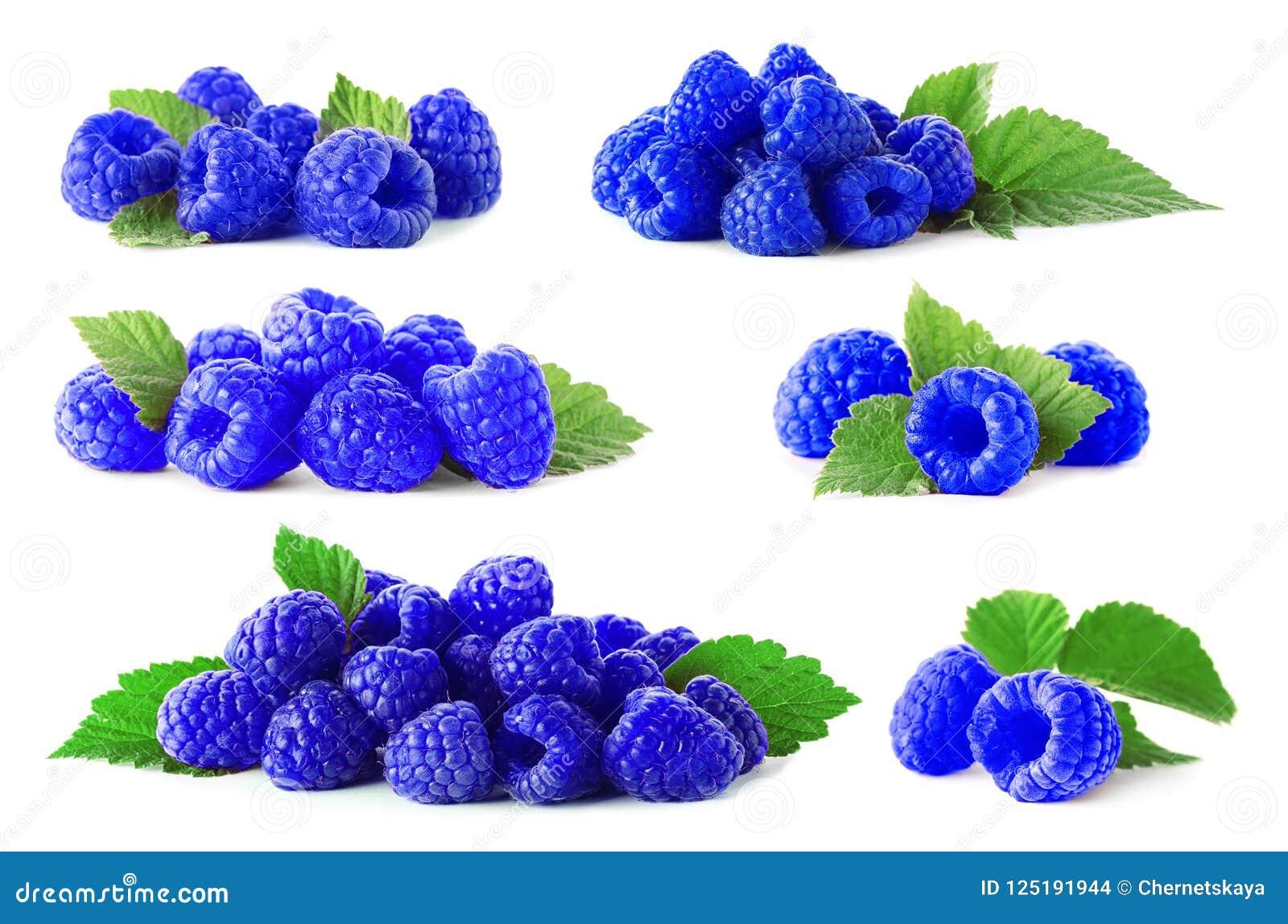 Placez avec les framboises bleues