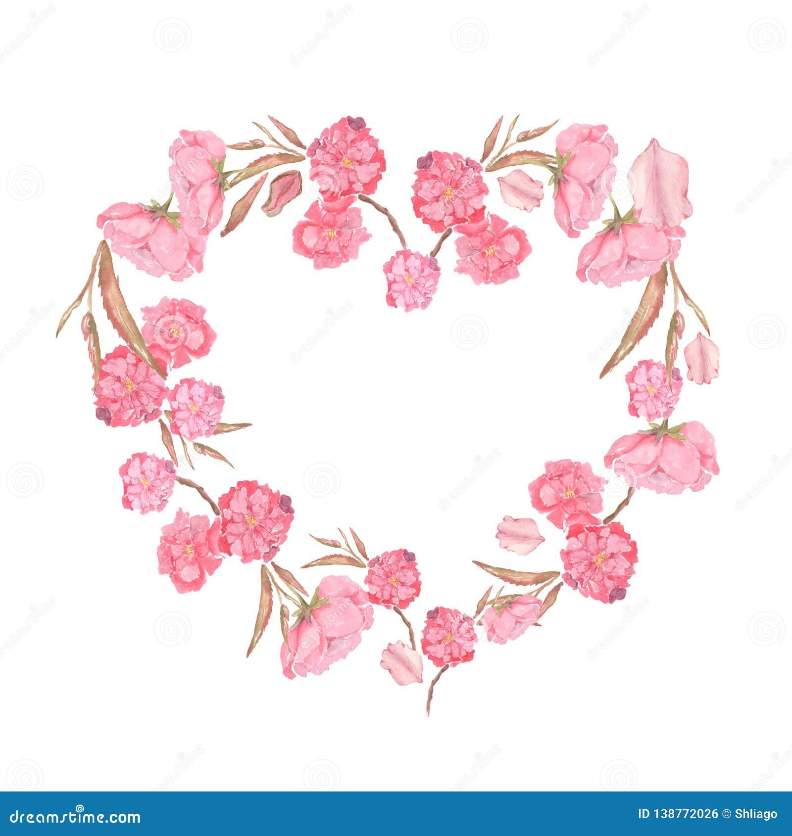 Placez de l illustration d aquarelle des fleurs roses d Apple et de cerise formées au coeur