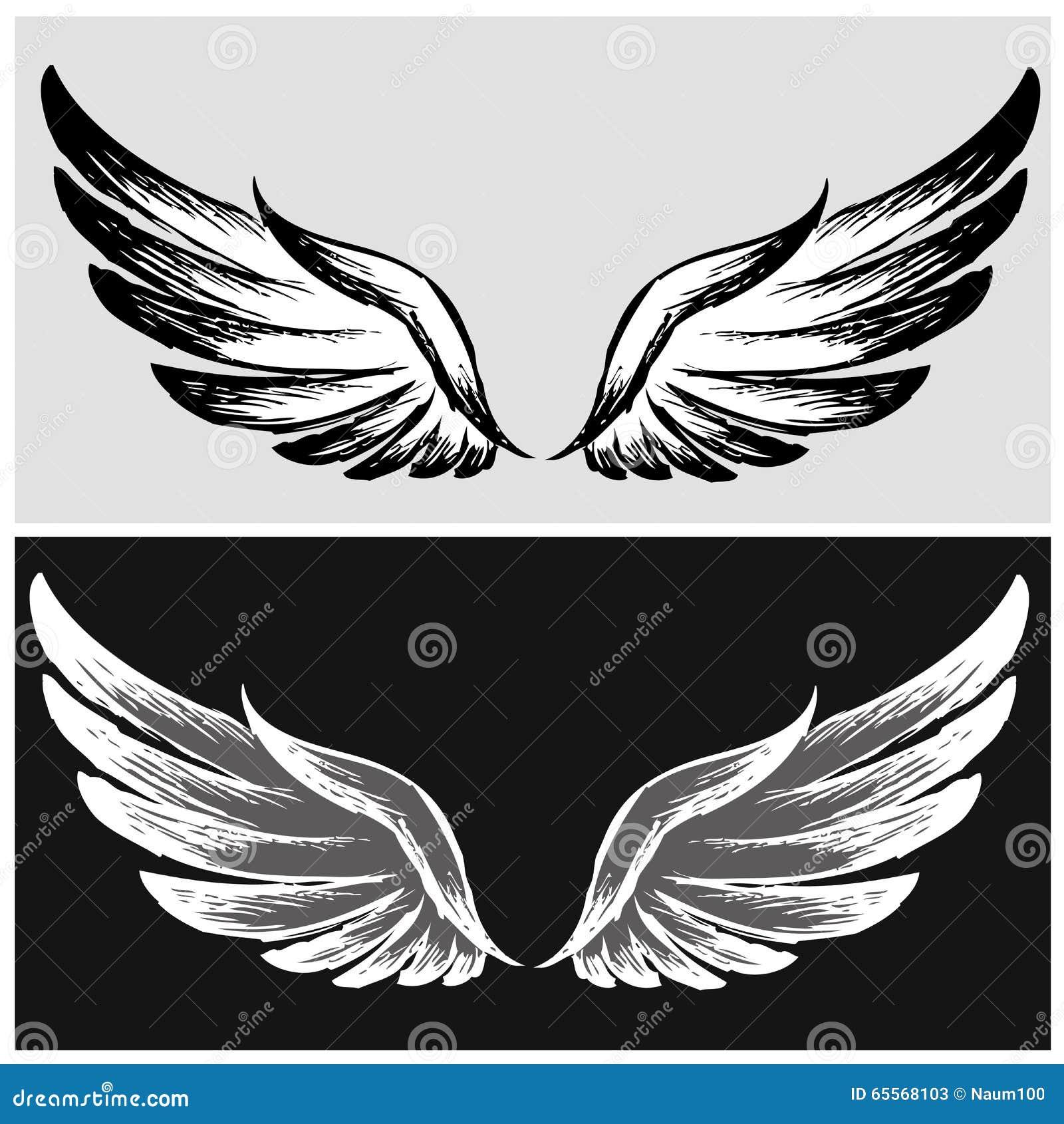 Placez les ailes dessin de main illustration de vecteur - Aile de dragon dessin ...