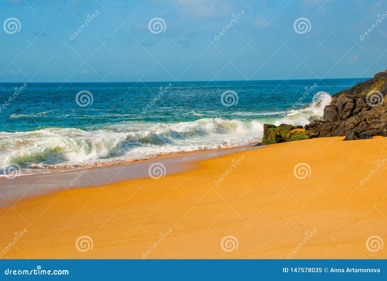 Plage br?silienne avec la mer ? sable jaune et bleue par temps ensoleill? brazil salvador beau chiffre dimensionnel illustration