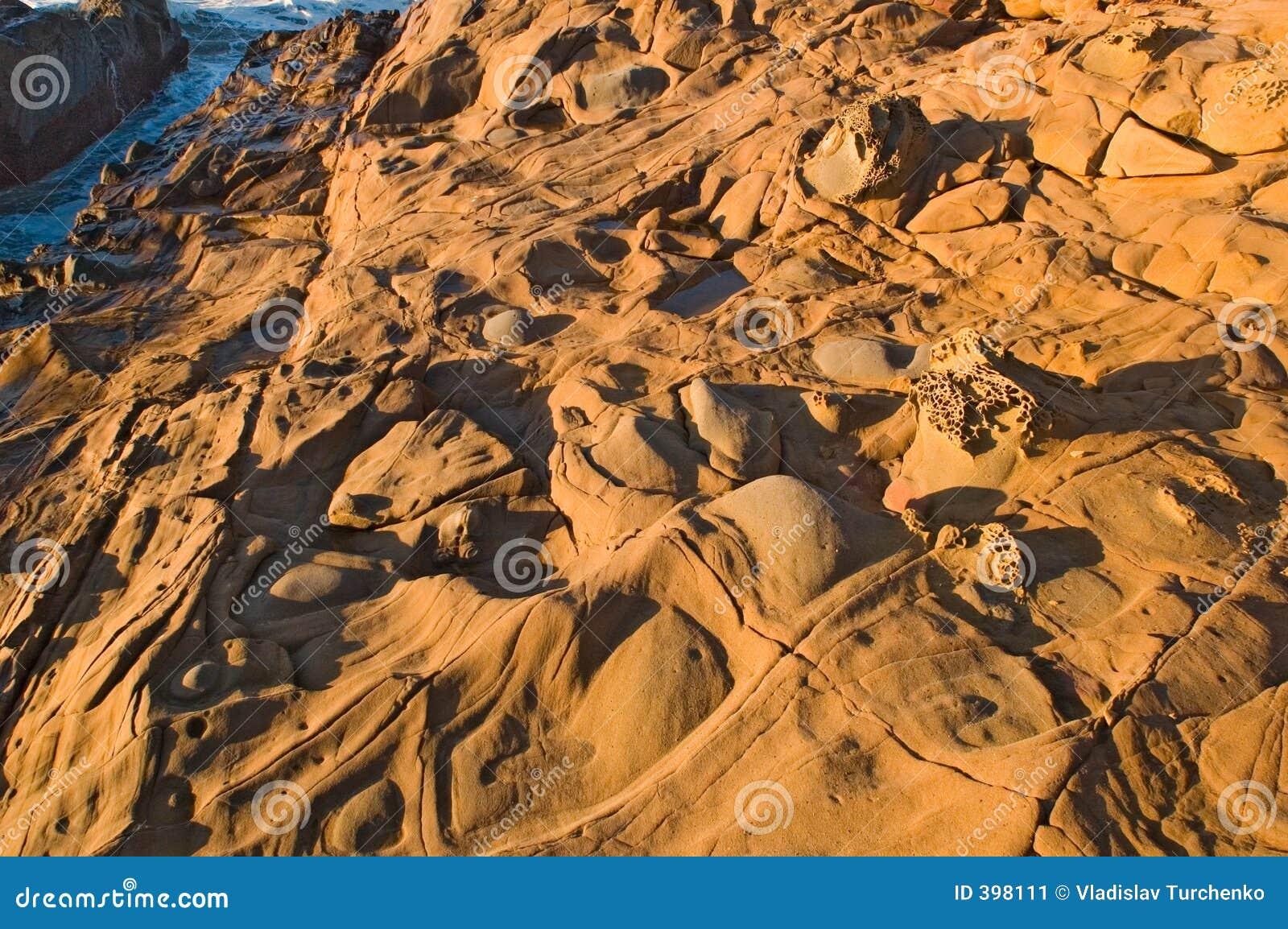 Plage d état creuse d haricot chez la Californie nordique