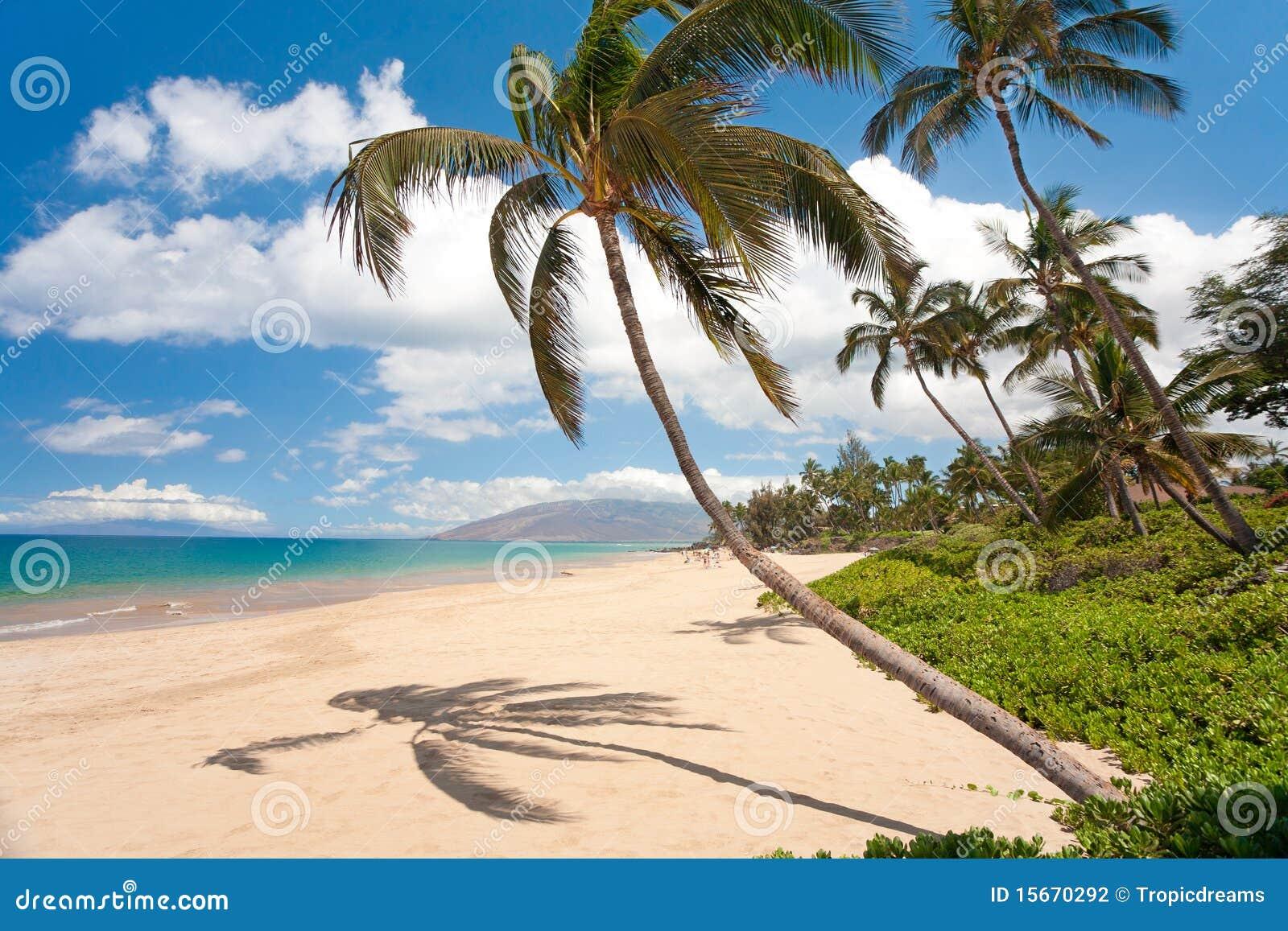 Plage de Maui Hawaï