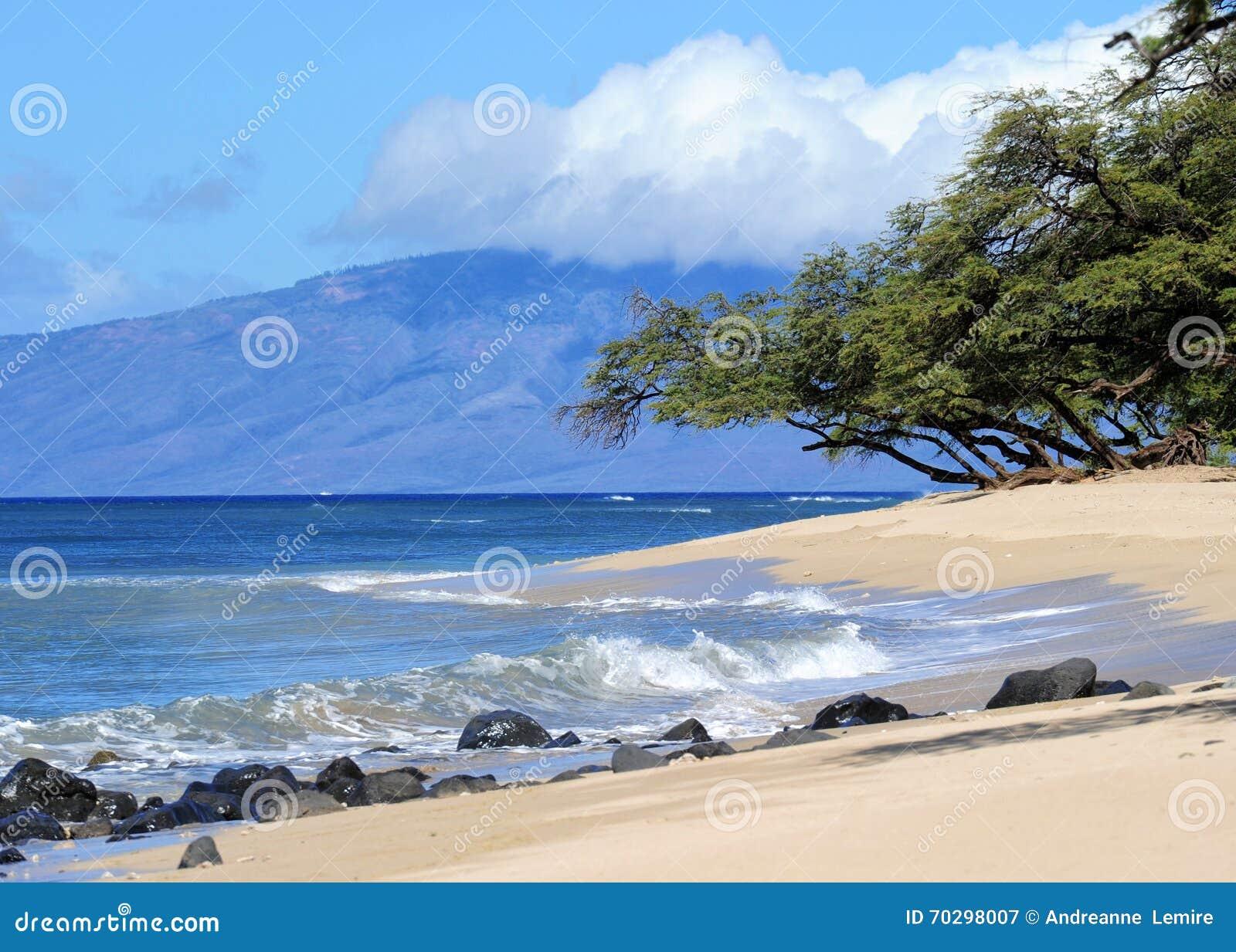 Plage de Maui, Hawaï