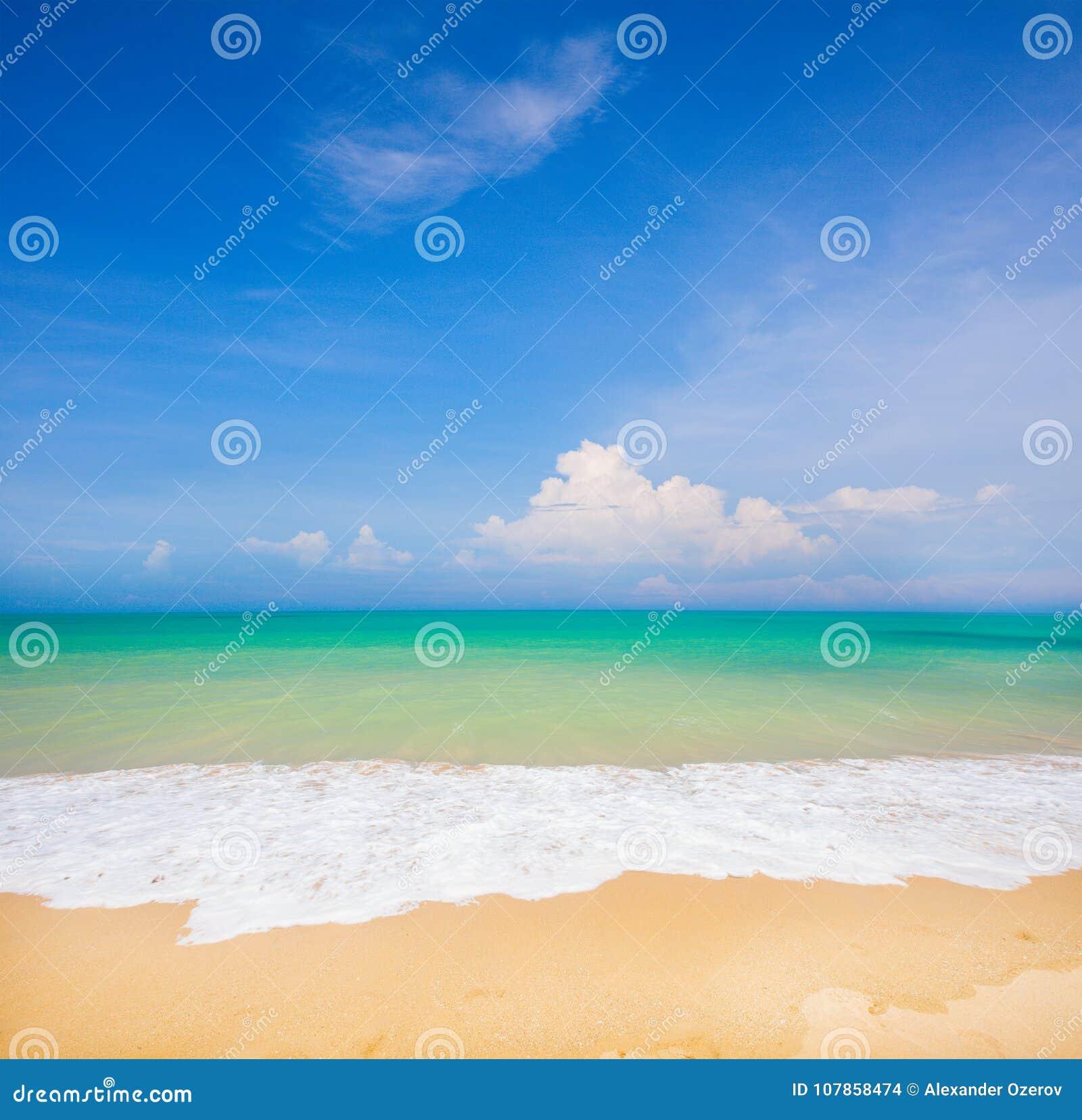 Plage et belle mer tropicale