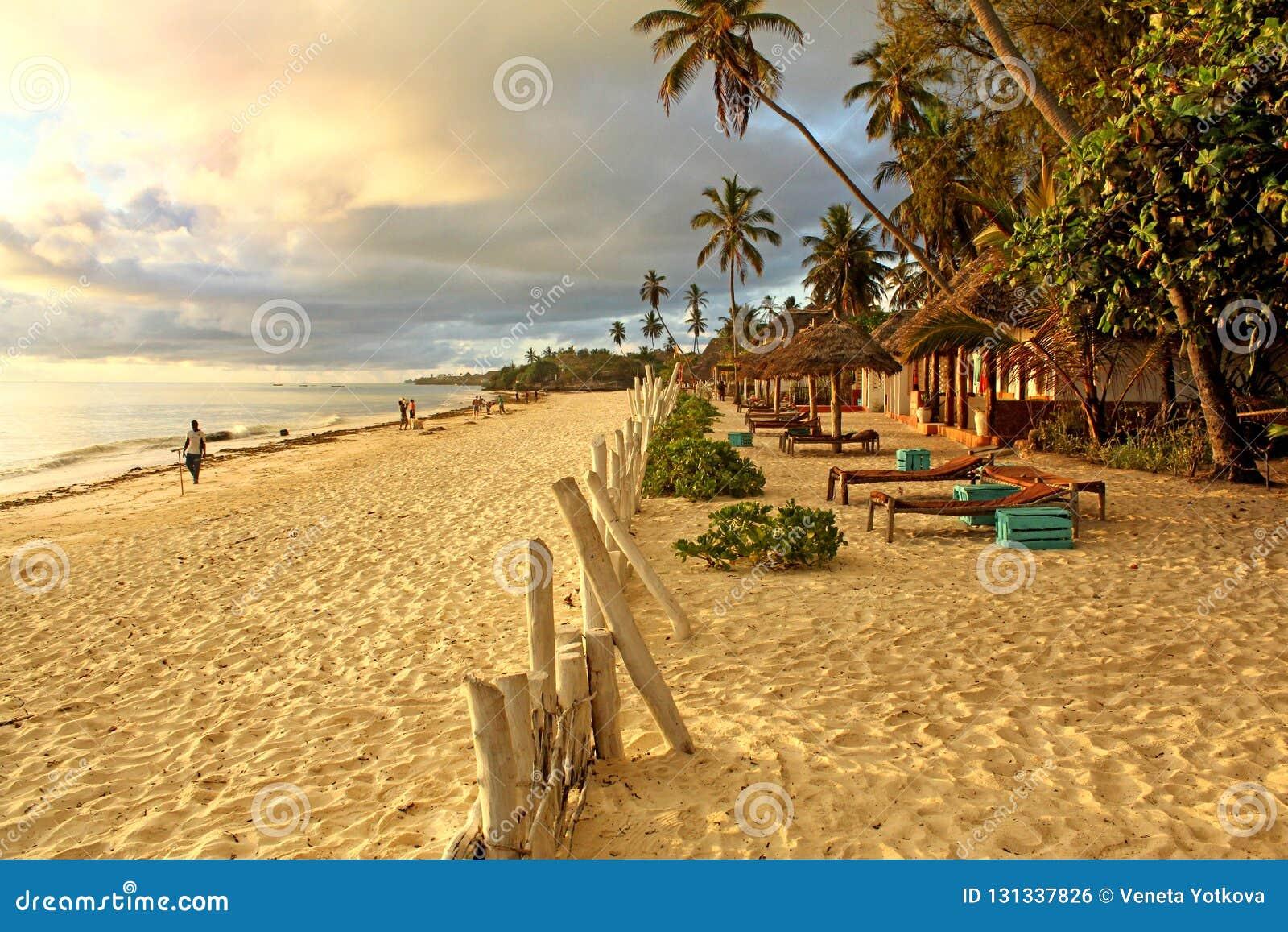 Plage exotique tropicale le matin ensoleillé à Zanzibar