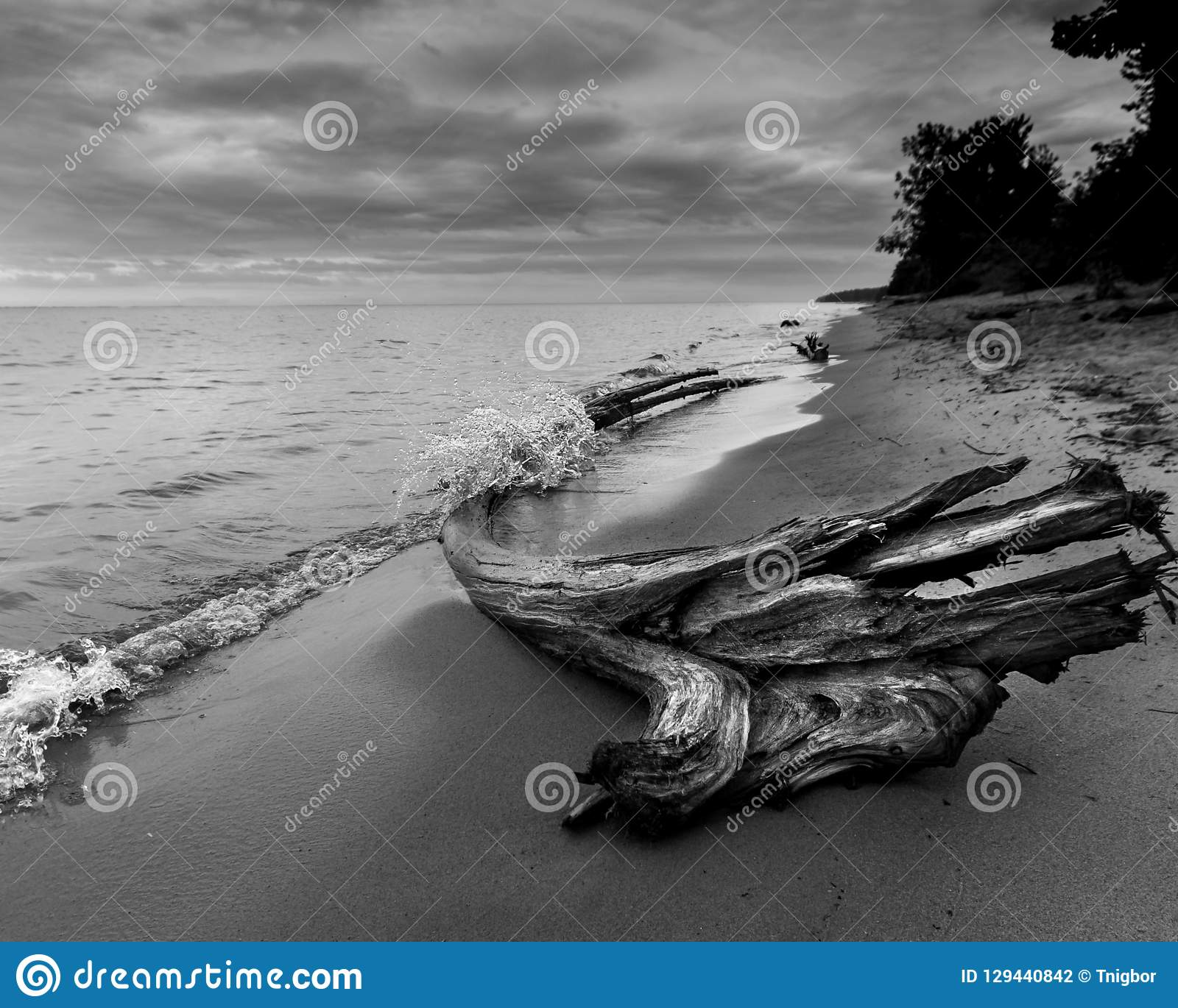 Plage orageuse avec de l eau bois de flottage éclaboussant au-dessus du rondin