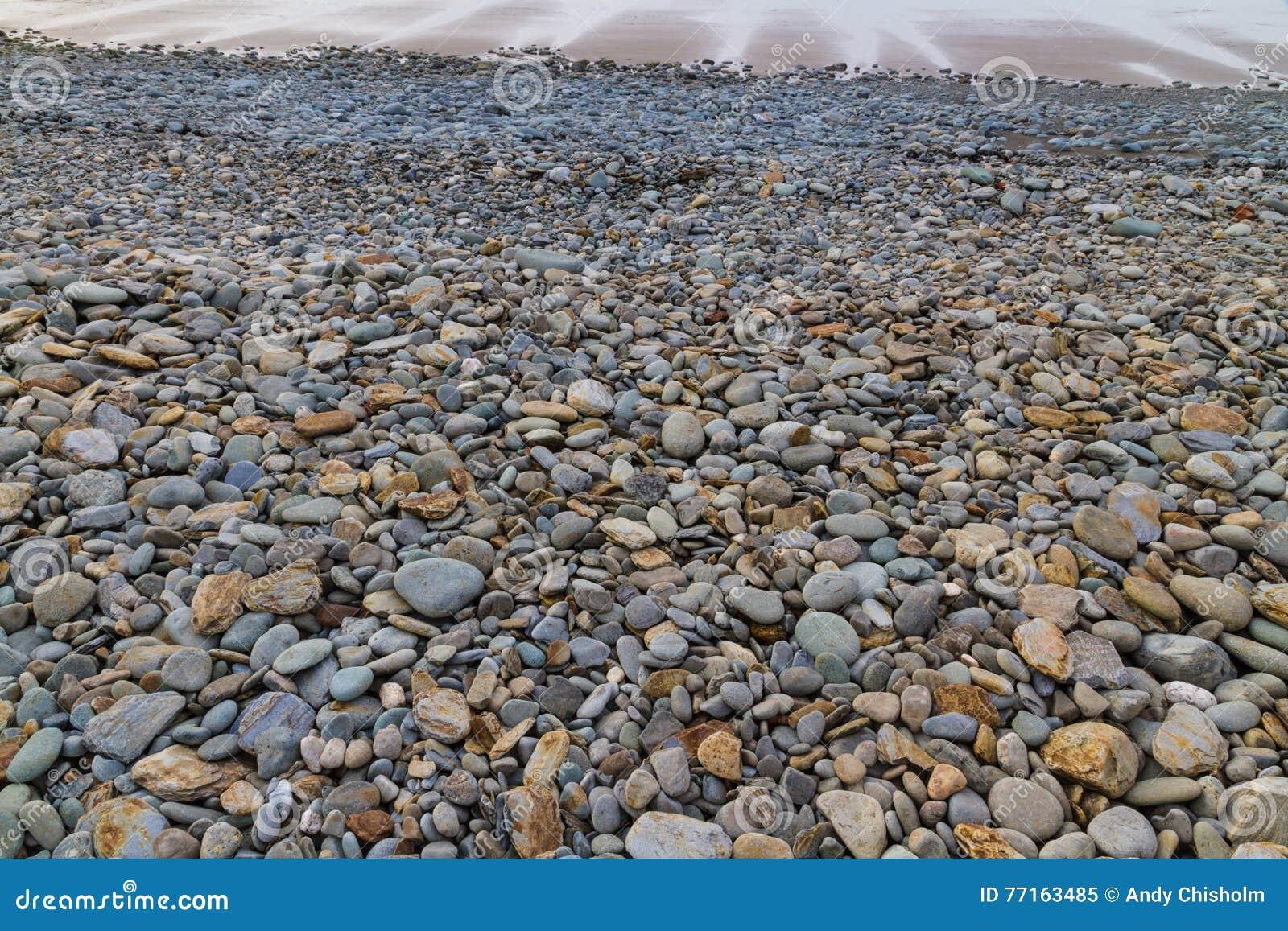 Plage pierreuse à marée basse