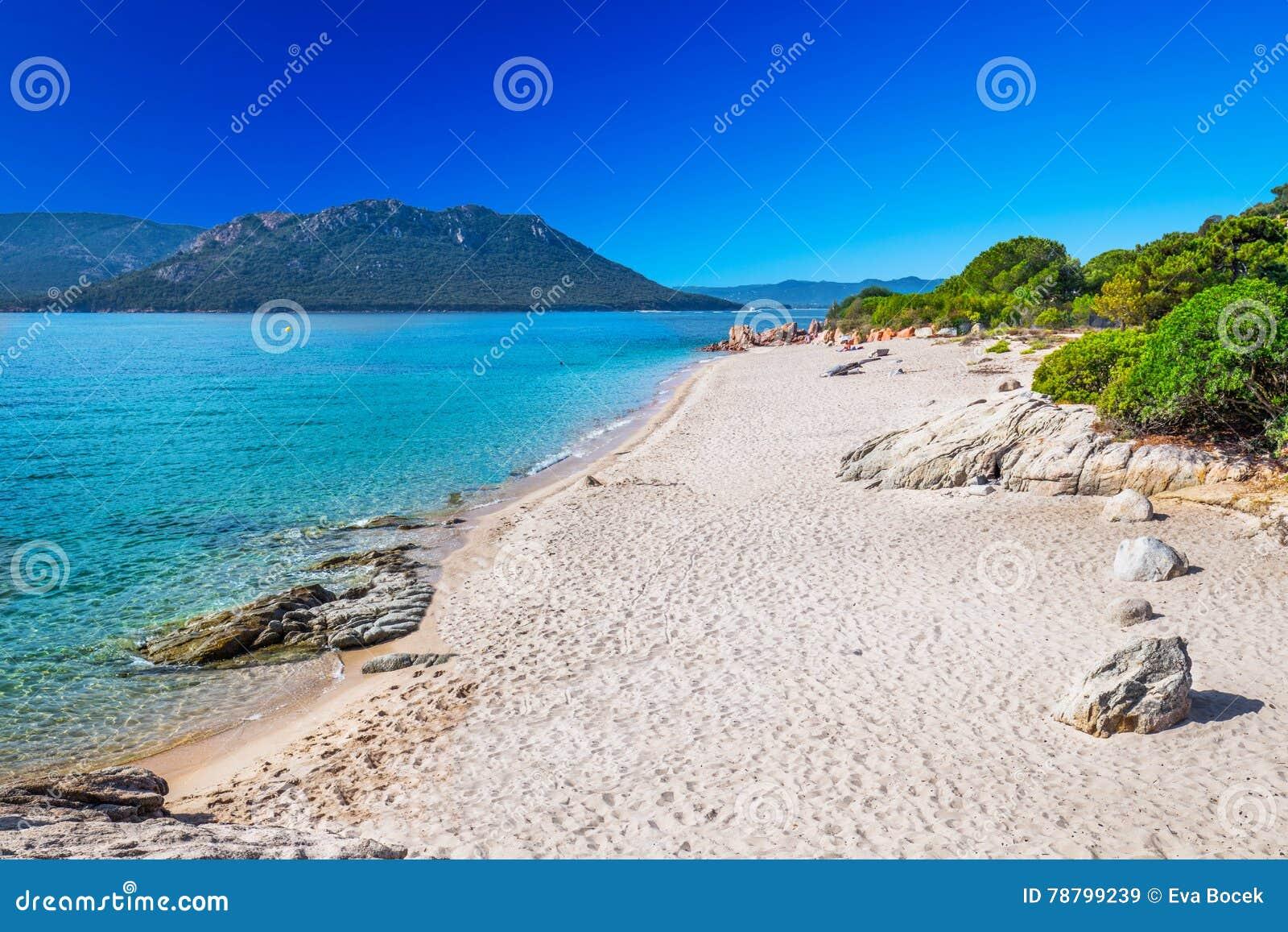 Plage Sablonneuse San Ciprianu En Corse, France, L\'Europe Photo ...