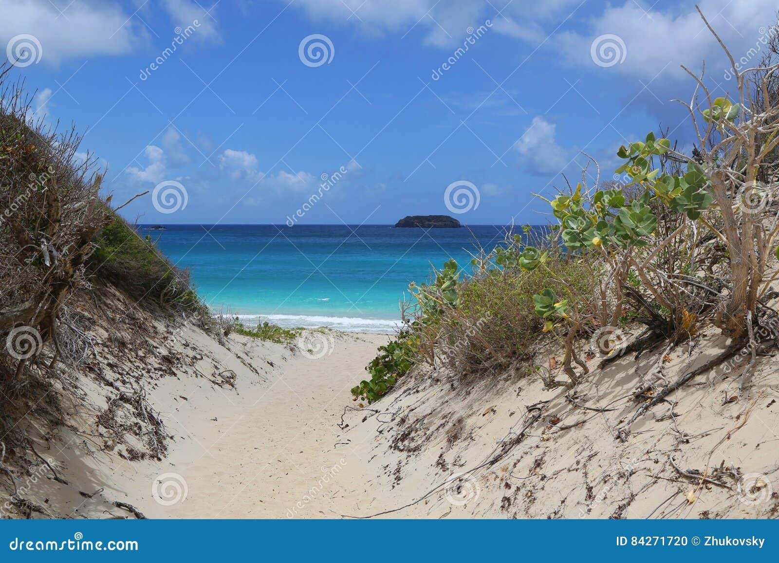 Plage saline, St Barts, Antilles françaises