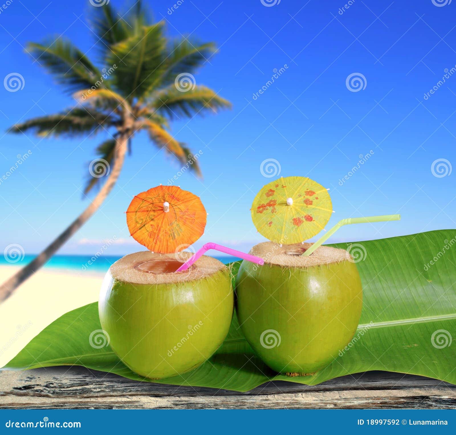 Plage tropicale de palmier de cocktails frais de noix de - Palmier noix de coco ...