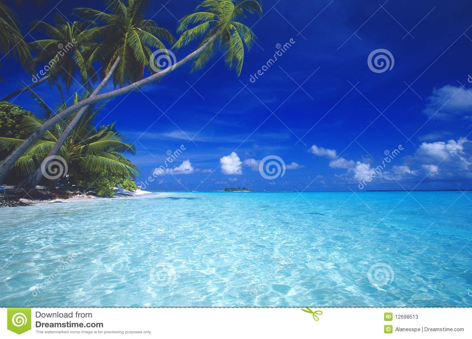 Plage tropicale Maldives