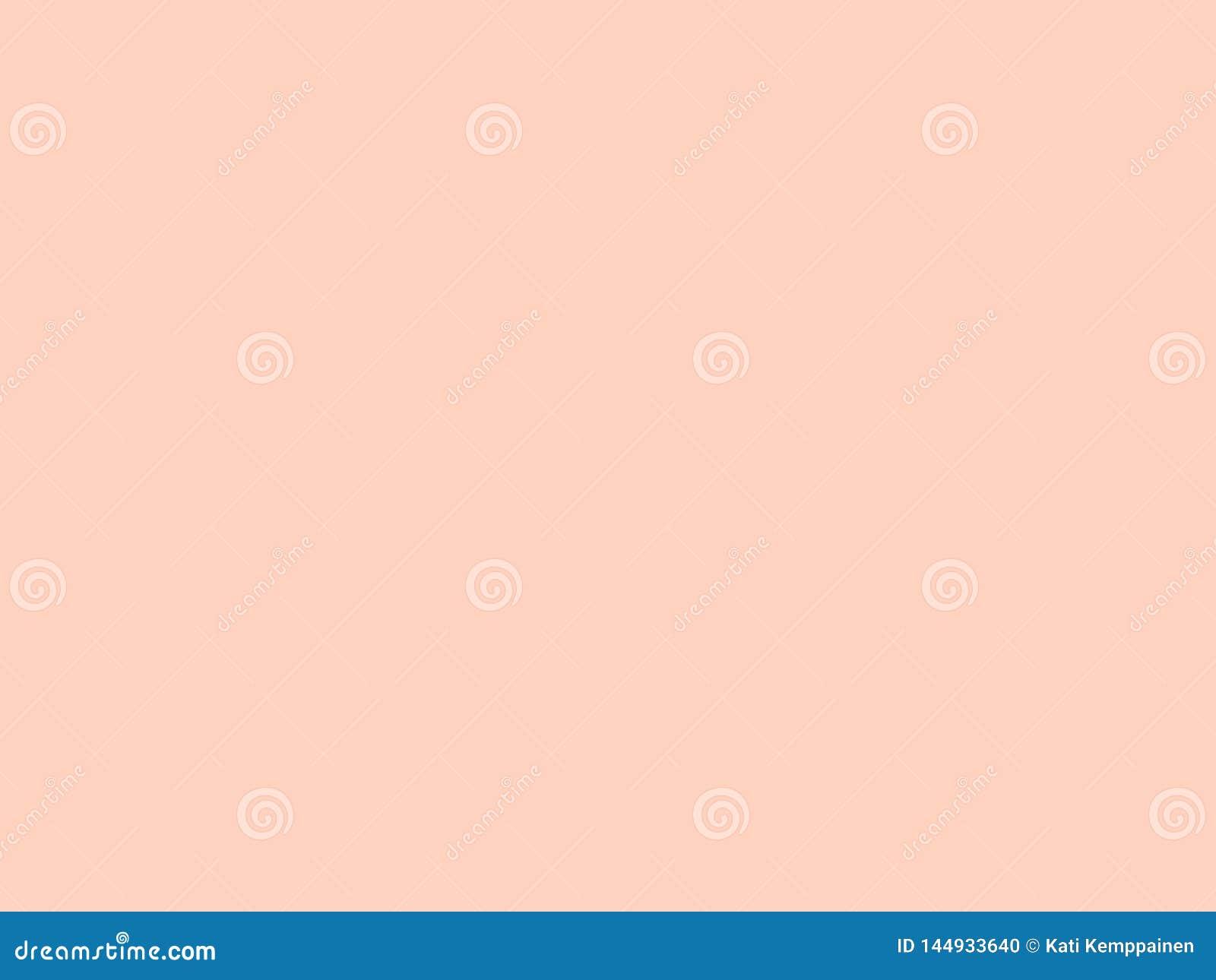 Plain Apricot Background Light Pink Wallpaper Stock Photo Image
