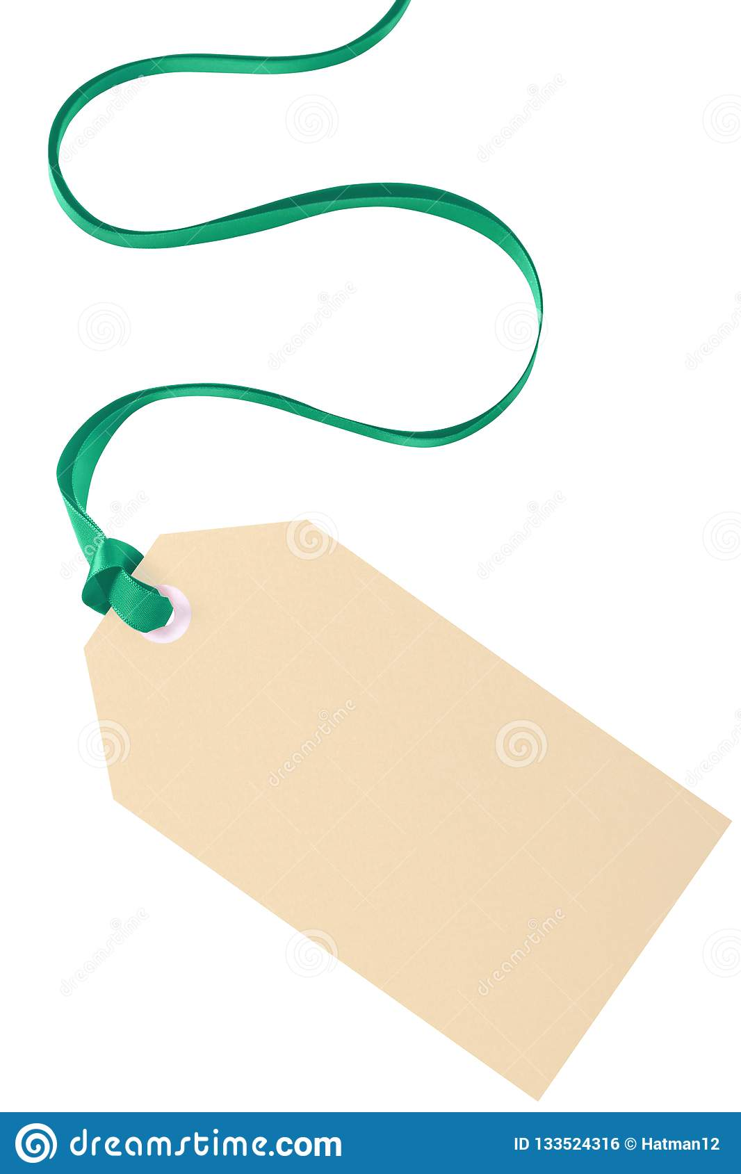 Plain Gift Tag Label Green Ribbon Isolated White Background