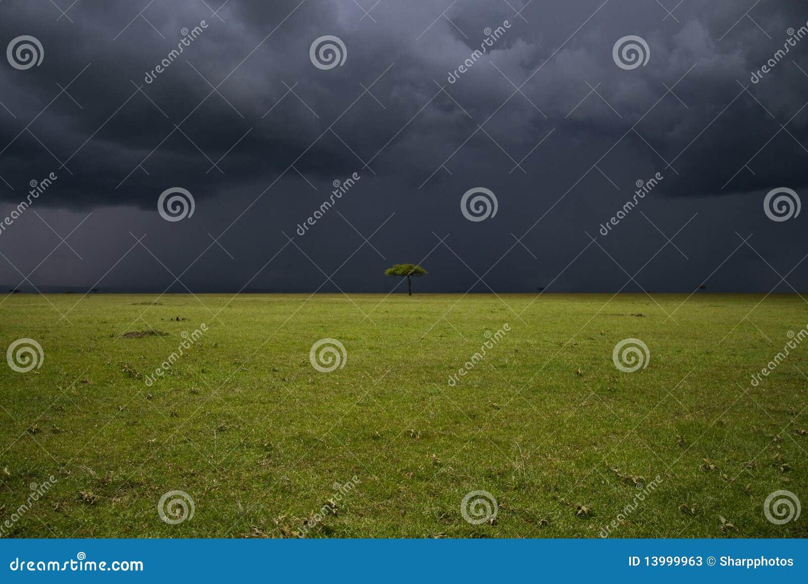 Plaine de Mara de masai