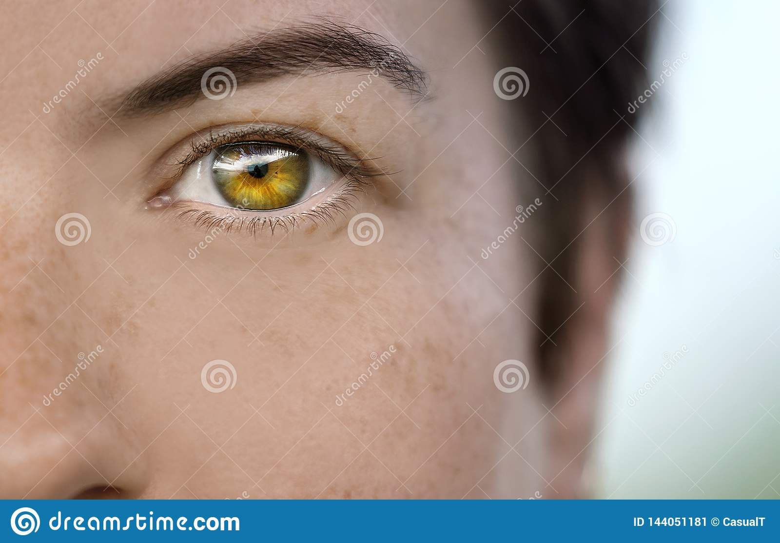Plan rapproché de l oeil d un modèle femelle montrant de légères taches de rousseur sur sa peau