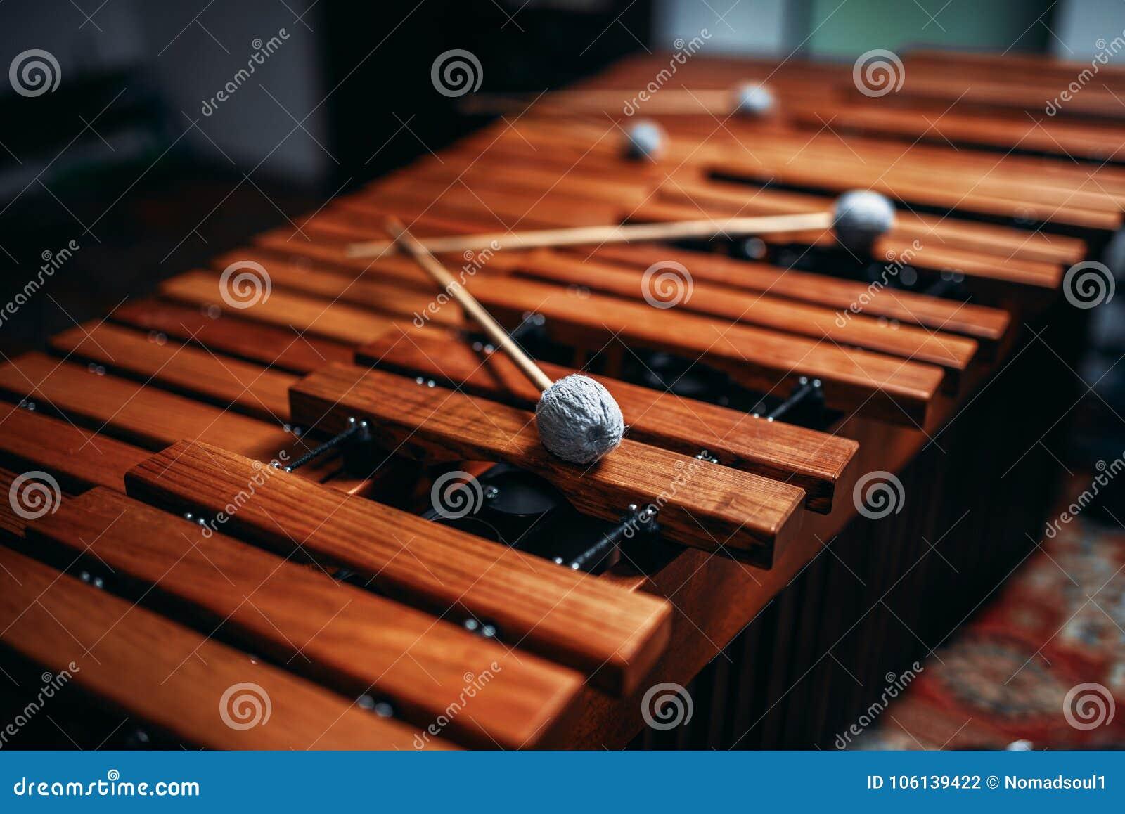 Plan rapproché de xylophone, instrument de percussion en bois
