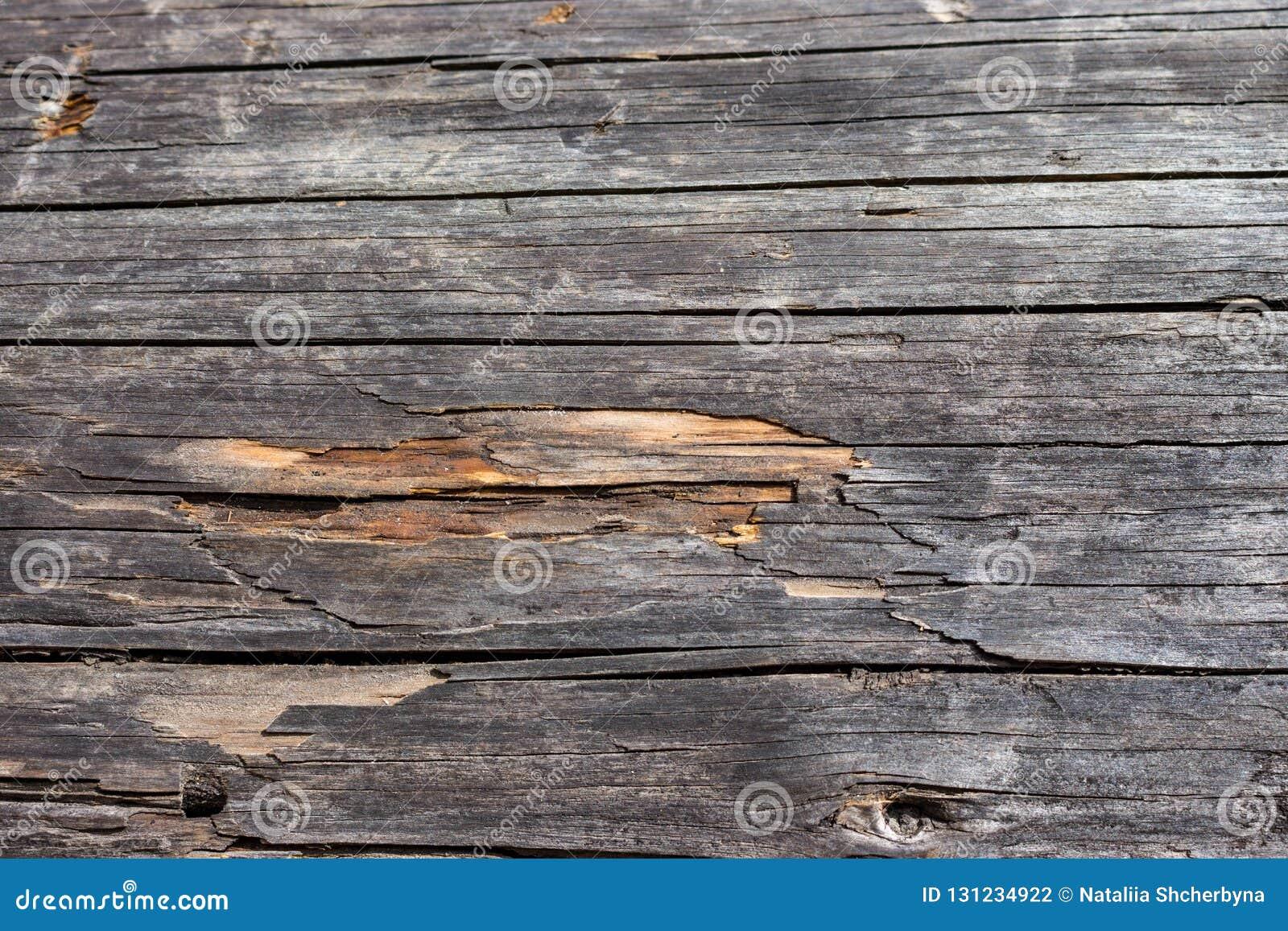 Planche En Bois Deco planches horizontales en bois grises panneaux en bois