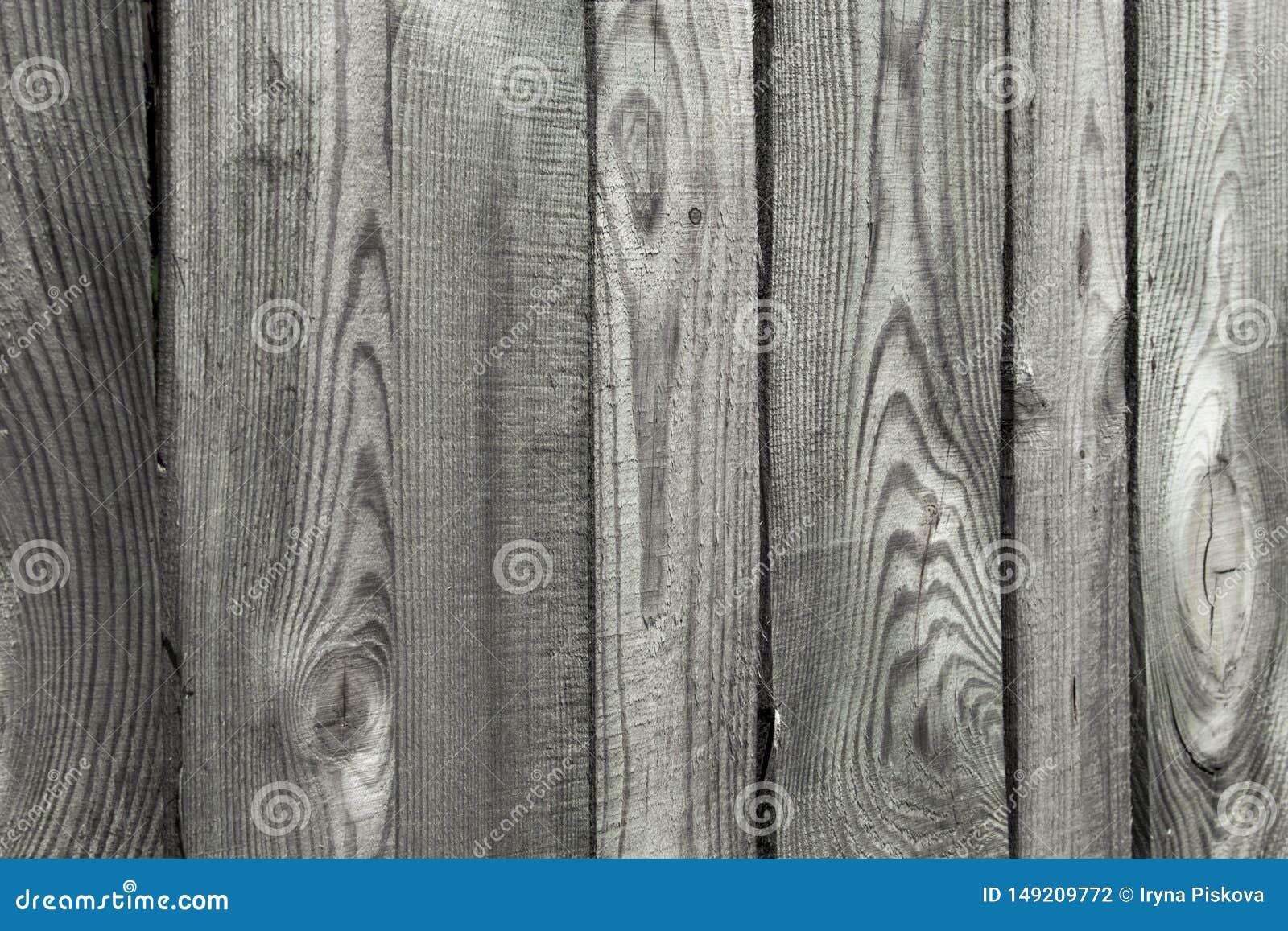 Plancia di legno di alta risoluzione come struttura e fondo