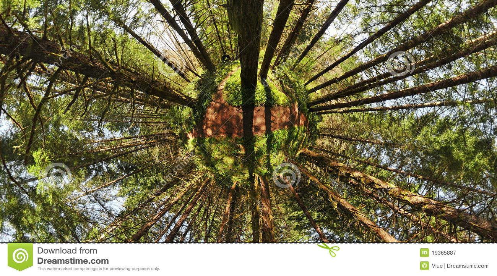 Planeta ambiental da floresta