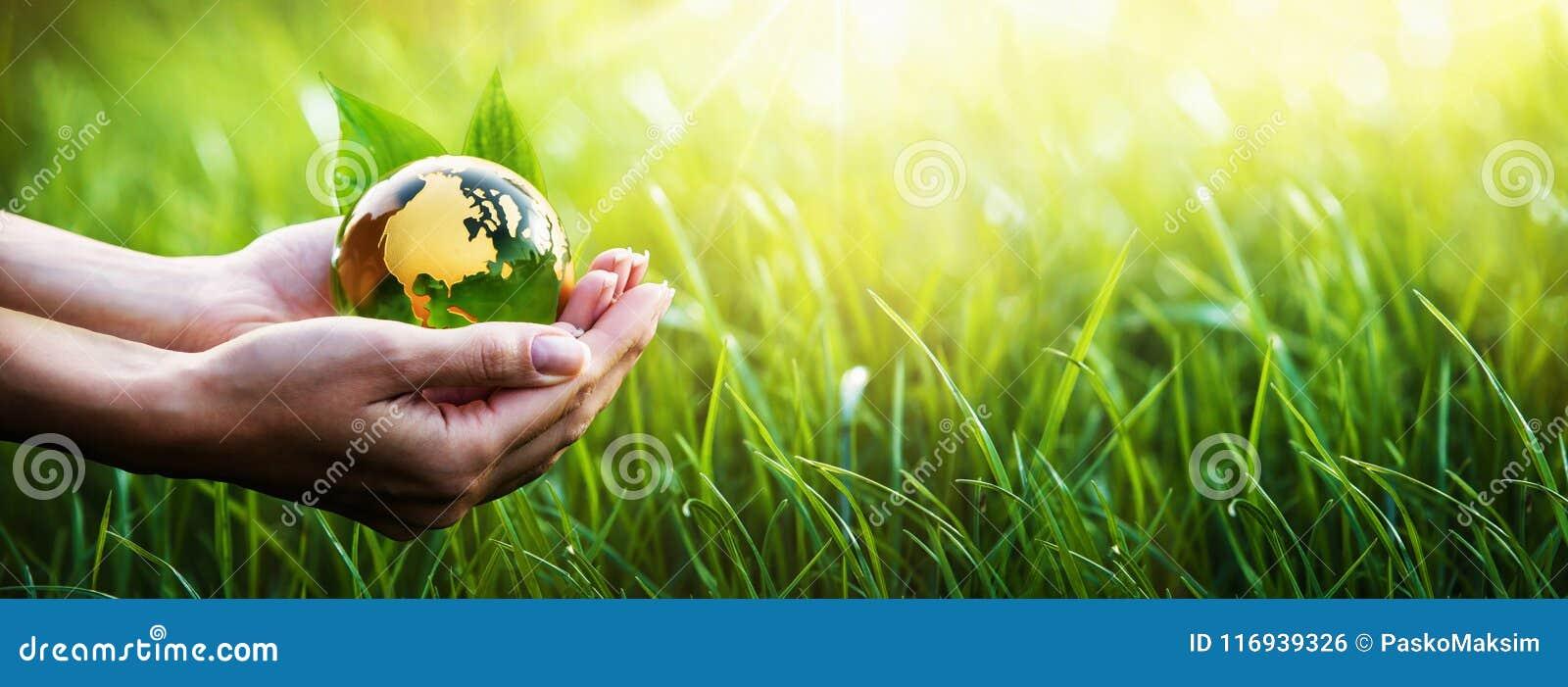Planeta verde en sus manos Concepto del ambiente