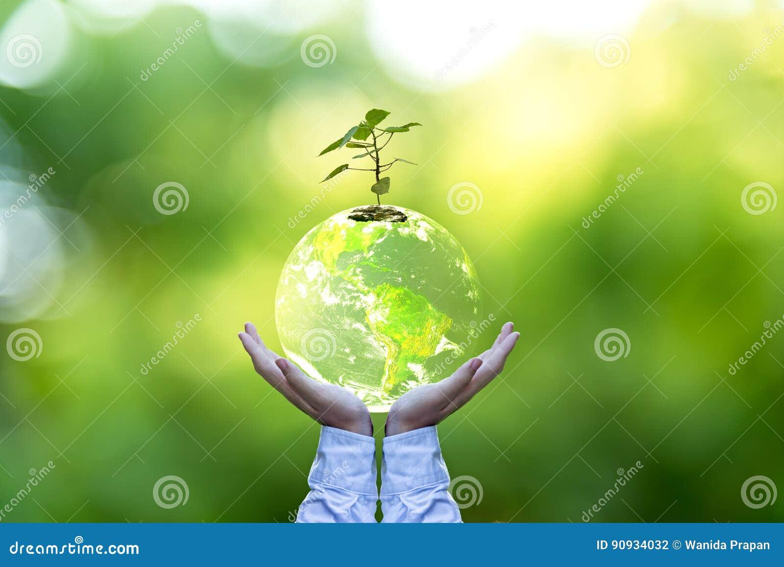 Planeten och trädet i människahänder över den gröna naturen, sparar jordbegreppet,